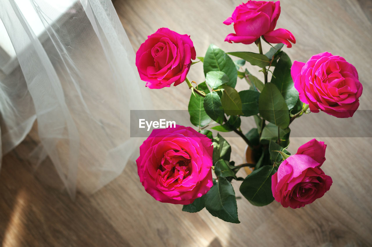 rose, rose - flower, flowering plant, beauty in nature, flower, fragility, plant, vulnerability, pink color, freshness, close-up, flower head, inflorescence, petal, nature, table, high angle view, leaf, indoors, plant part, no people, flower arrangement, bouquet