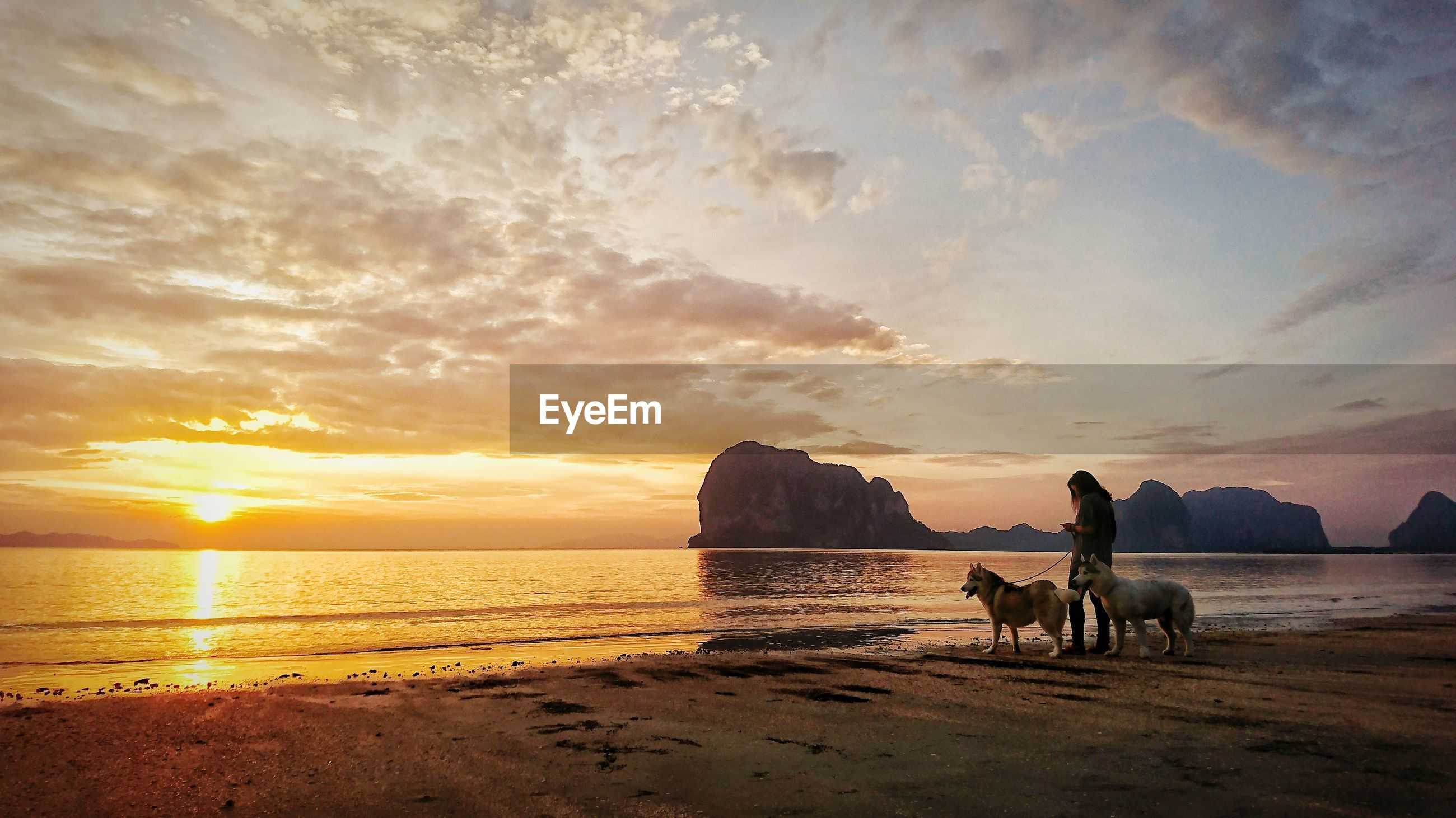 Woman standing with dogs at beach against orange sky