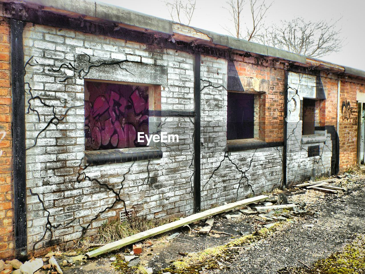 abandoned, built structure, architecture, building exterior, window, house, damaged, no people, weathered, day, bad condition, old ruin, outdoors, rotting, tree, close-up, sky