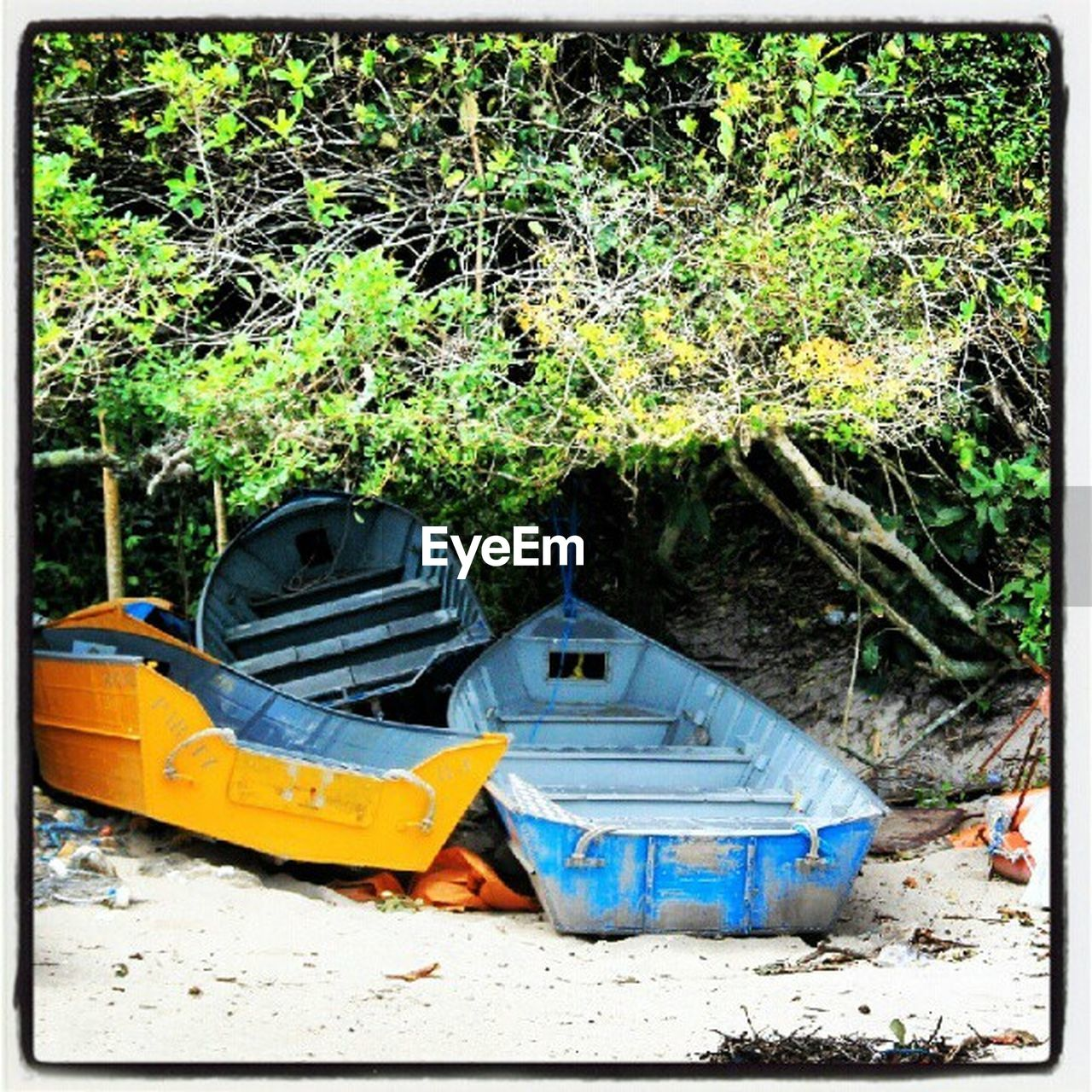 no people, abandoned, outdoors, nautical vessel, transportation, day, plant, moored, nature