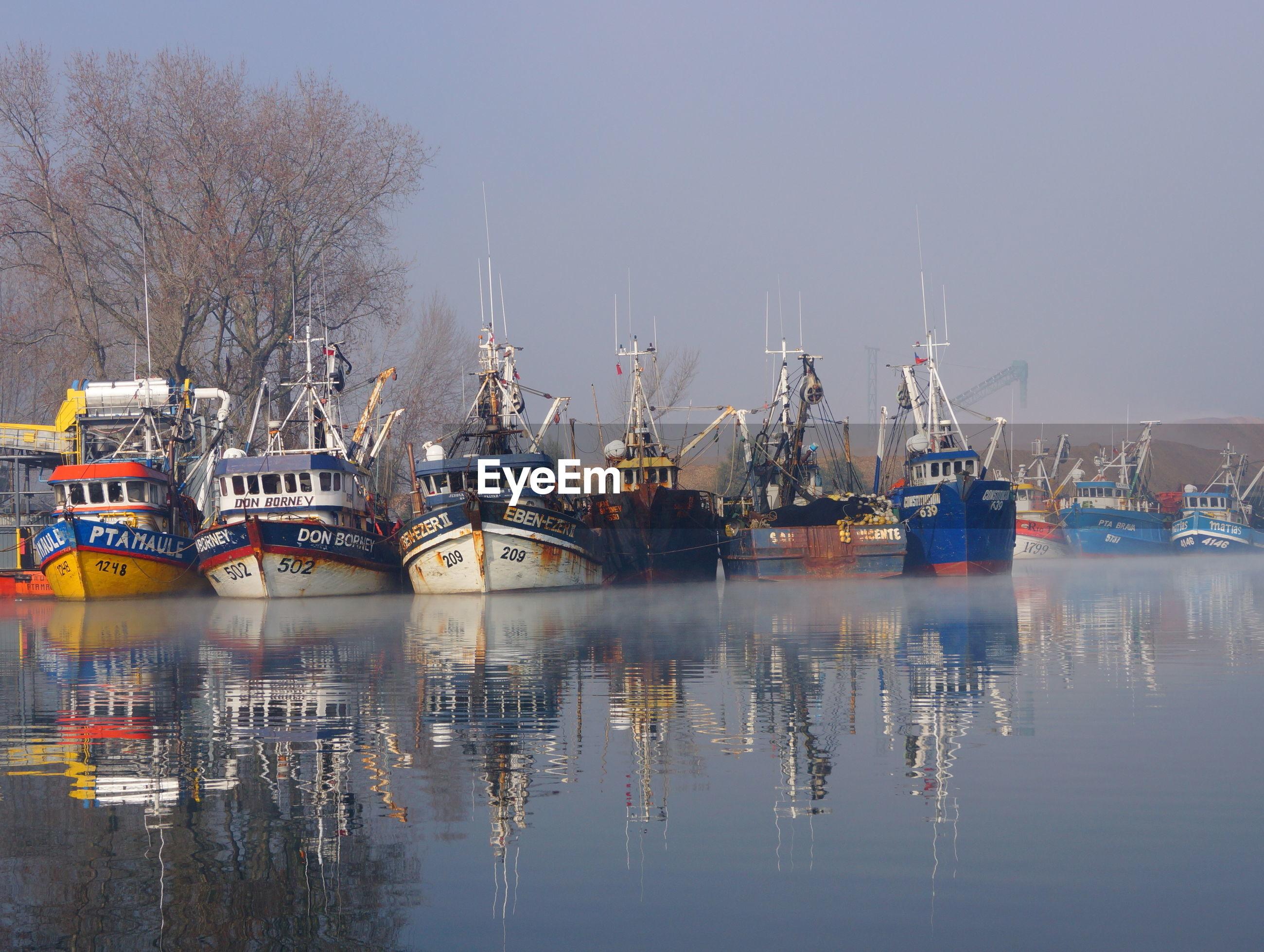 Trawlers moored at harbor