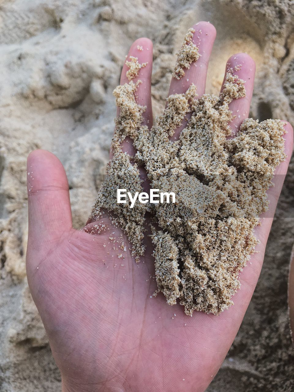 Cropped hand of person holding sand at beach