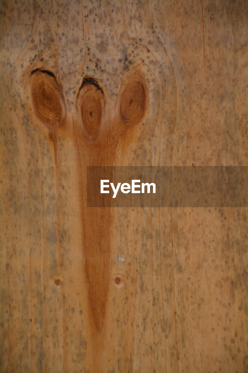 wood - material, indoors, no people, close-up, architecture, day