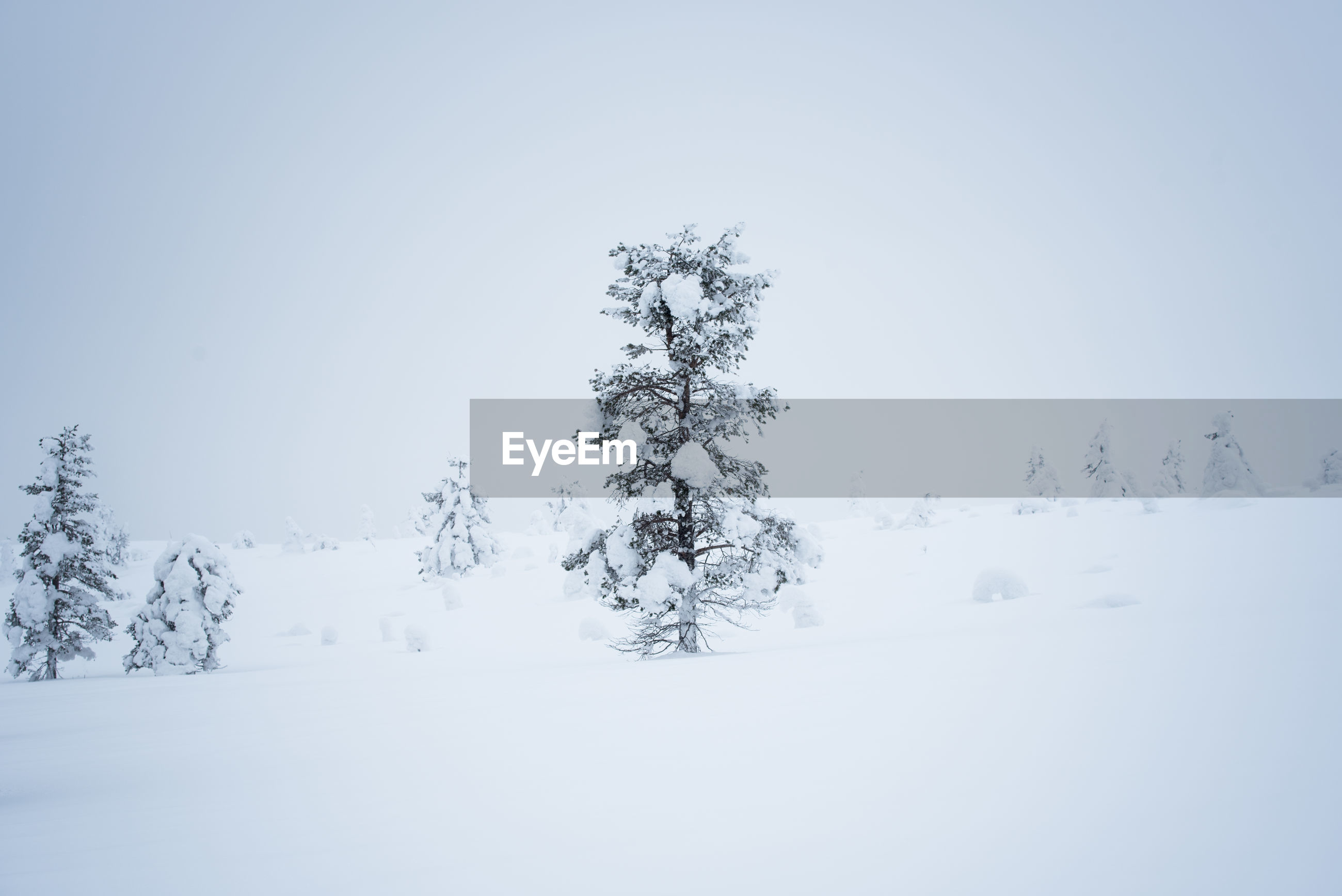 Snow covered field against sky during foggy weather