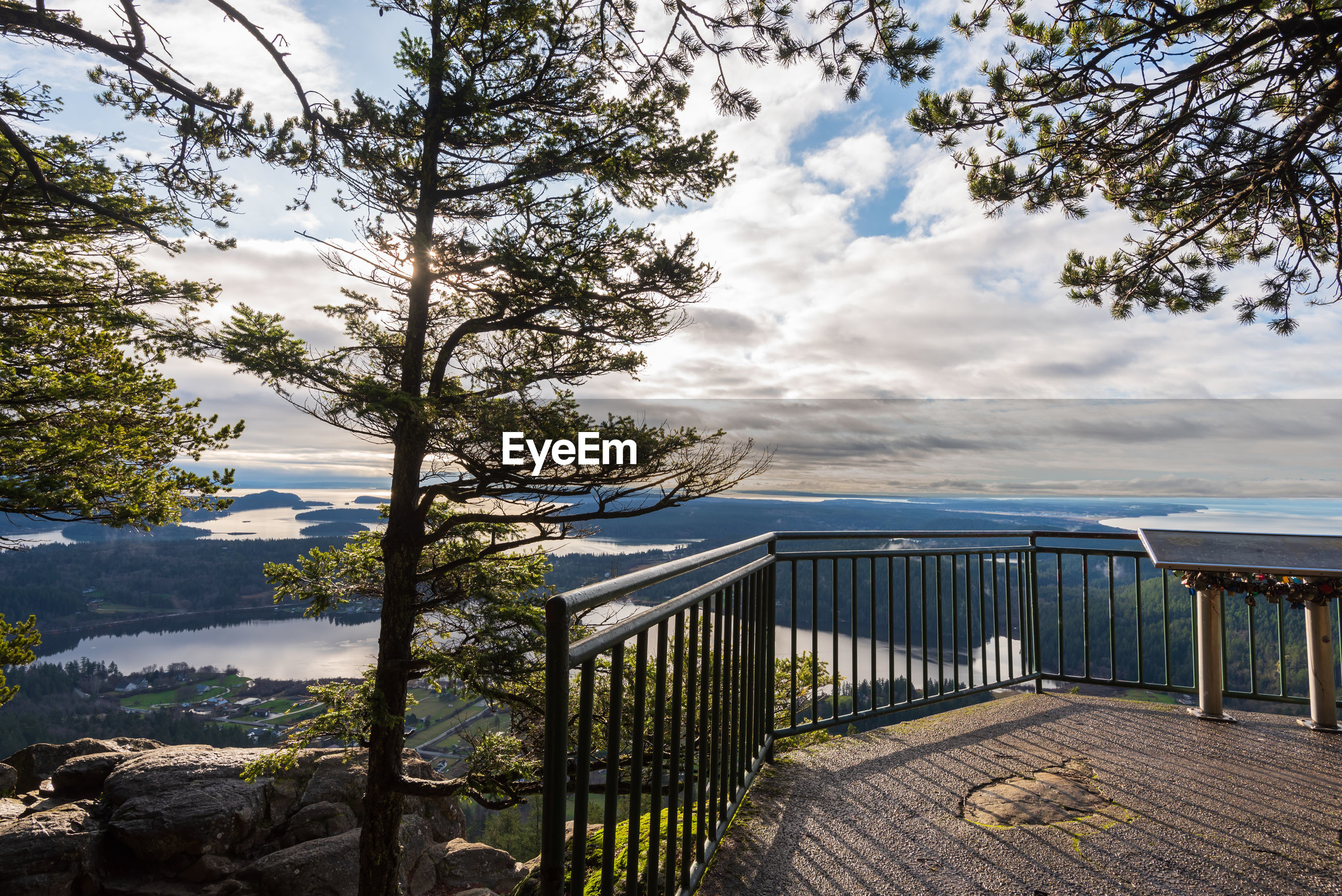 Landscape of trees and a viewing platform above a valley at mount erie fidalgo island in washington