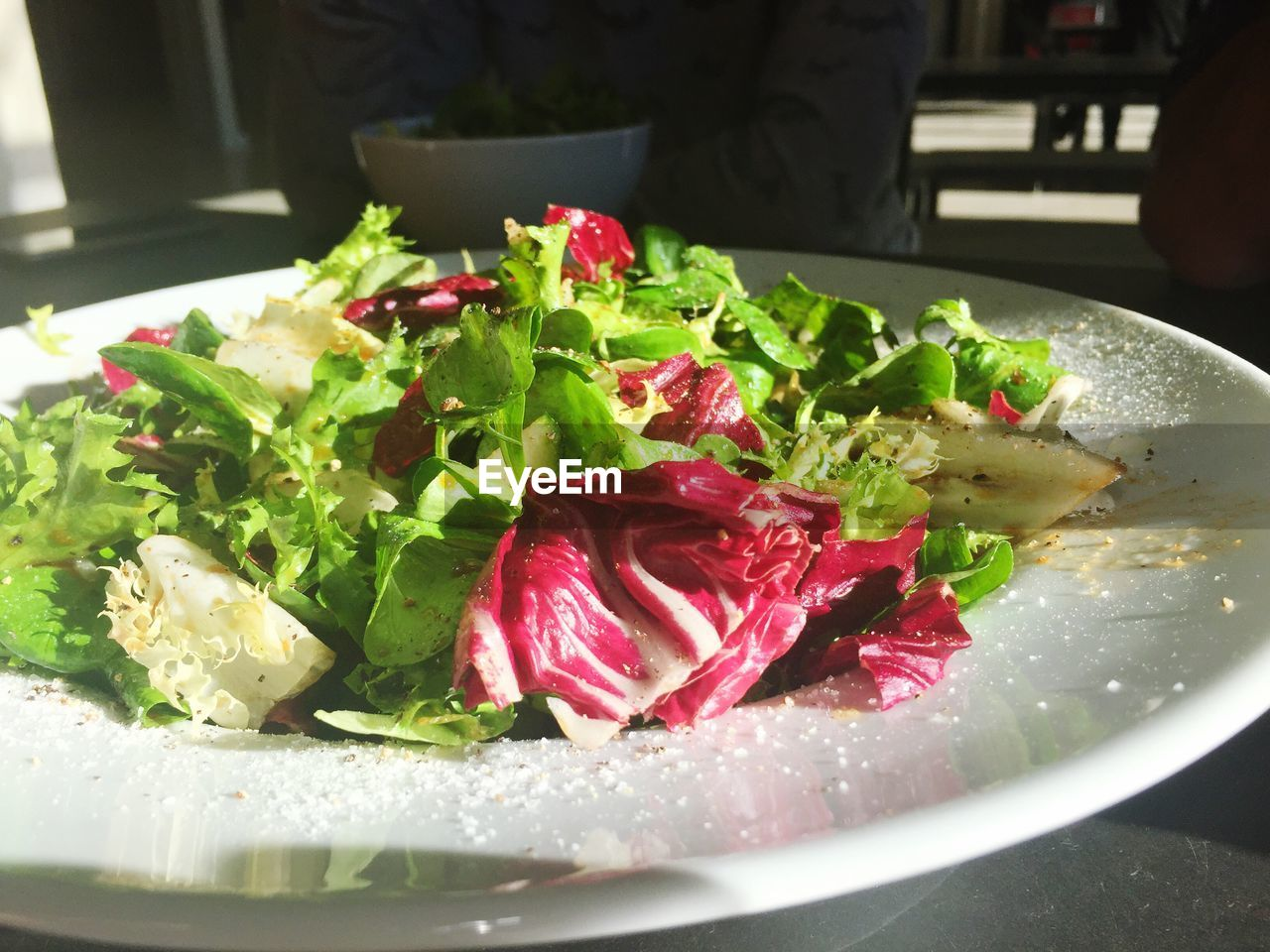 Close-up of fresh salad served in plate