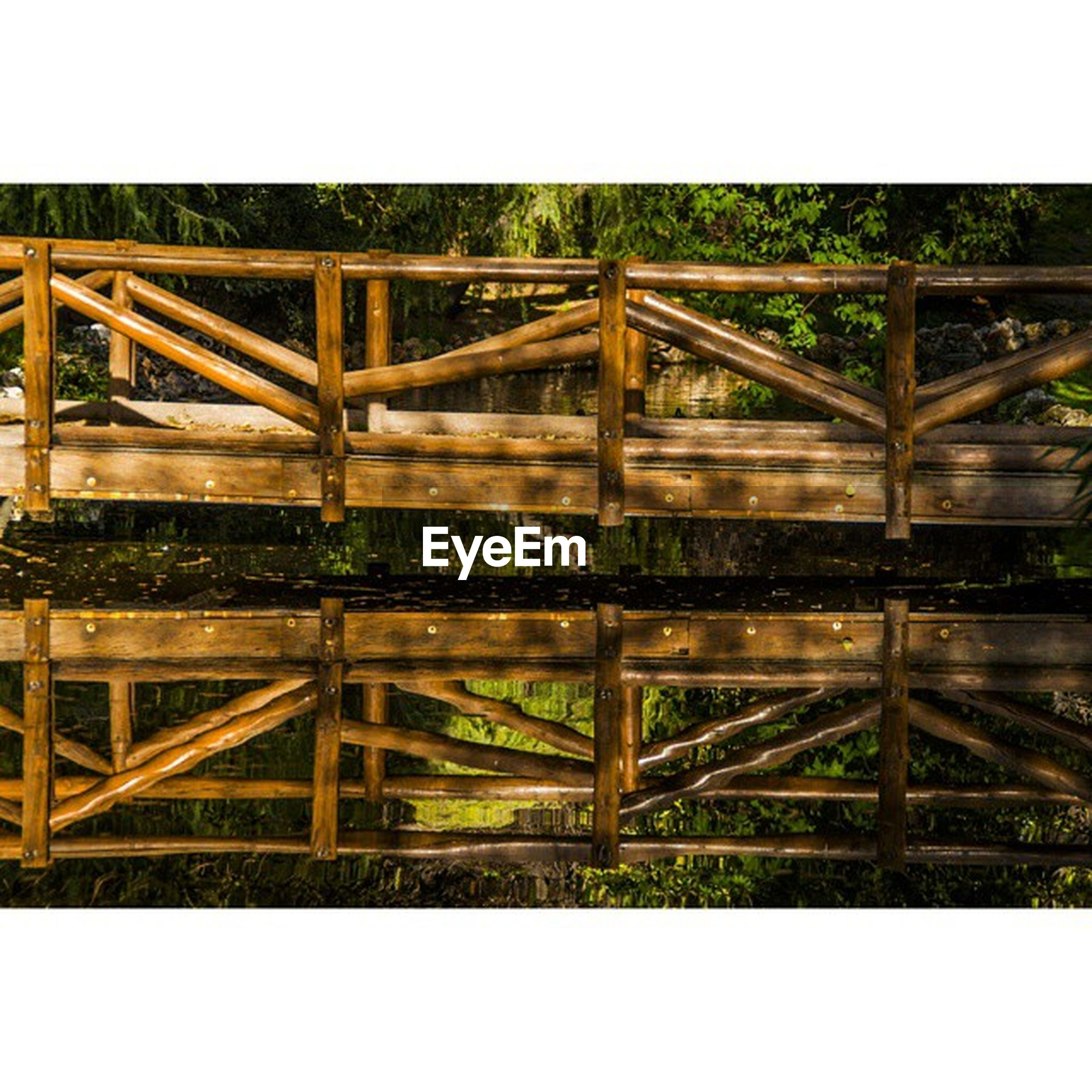 transfer print, auto post production filter, fence, wood - material, railing, wooden, metal, protection, built structure, day, wood, safety, outdoors, growth, sunlight, plant, bridge - man made structure, no people, security, nature