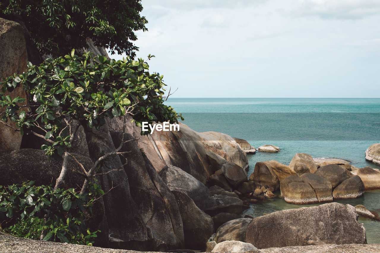 water, sea, sky, rock, beauty in nature, horizon over water, horizon, solid, tranquility, rock - object, scenics - nature, nature, tranquil scene, plant, no people, day, land, tree, beach, outdoors