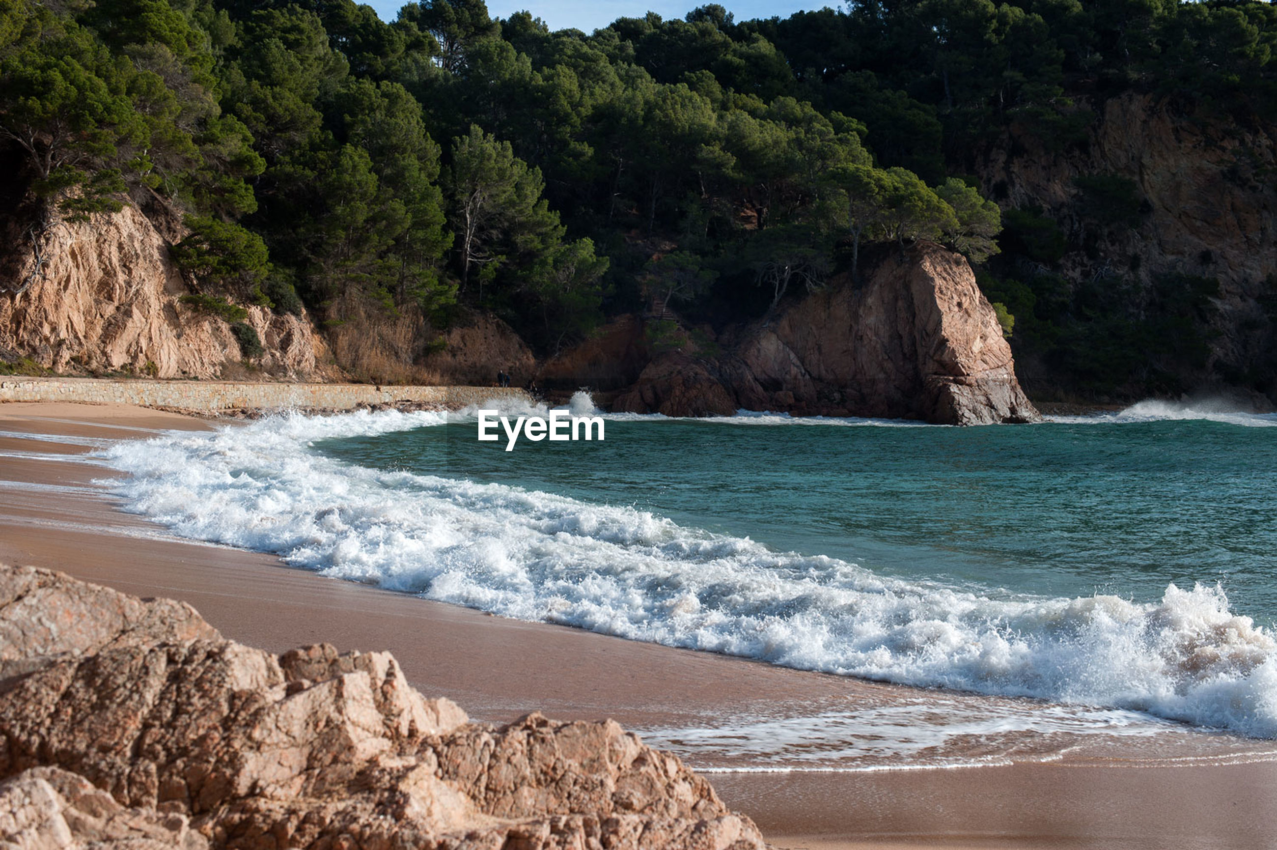 Wave rushing on shore at beach