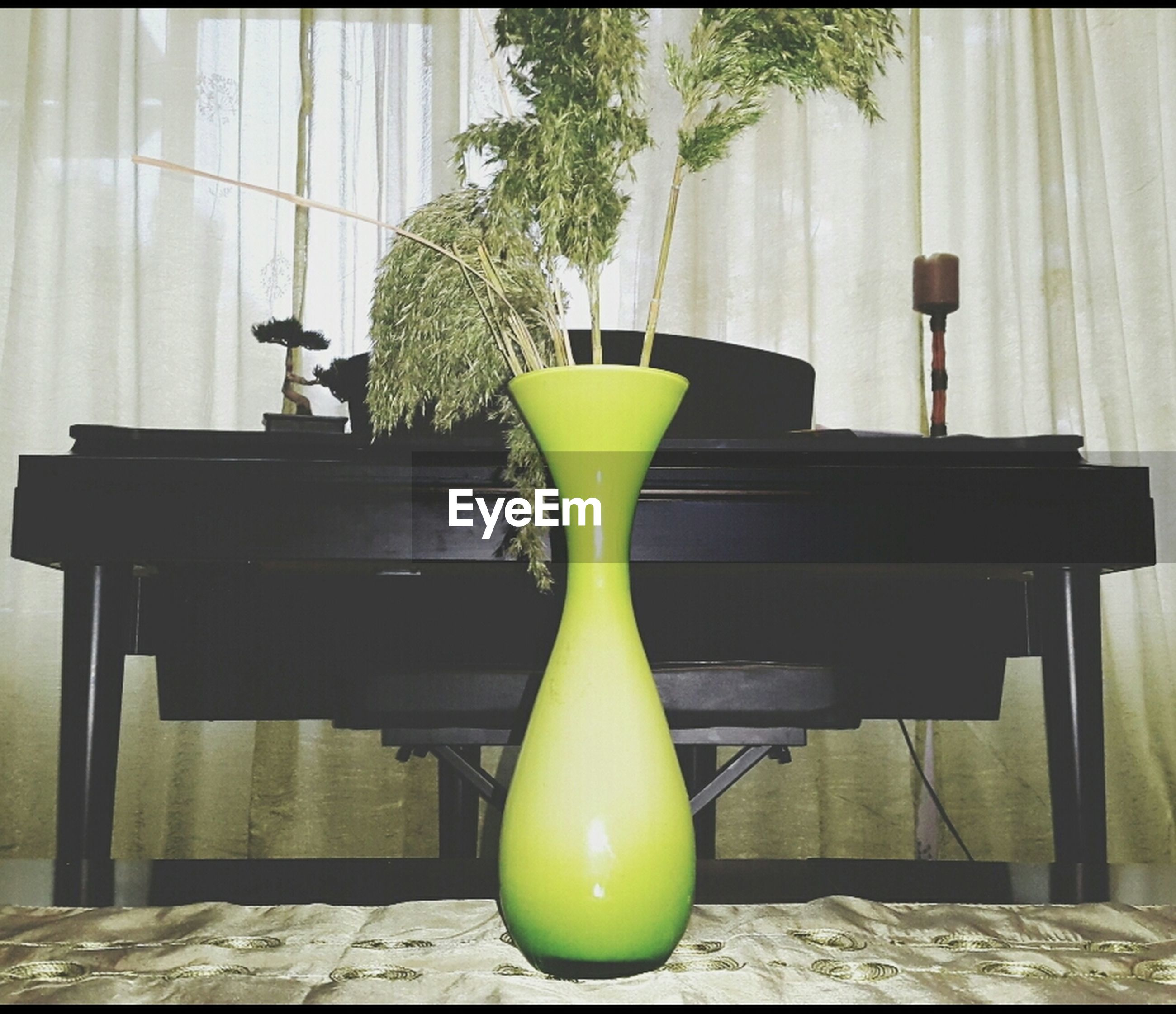 indoors, table, chair, absence, potted plant, vase, empty, home interior, still life, wood - material, flower pot, furniture, no people, yellow, day, sunlight, stool, plant, flower, freshness