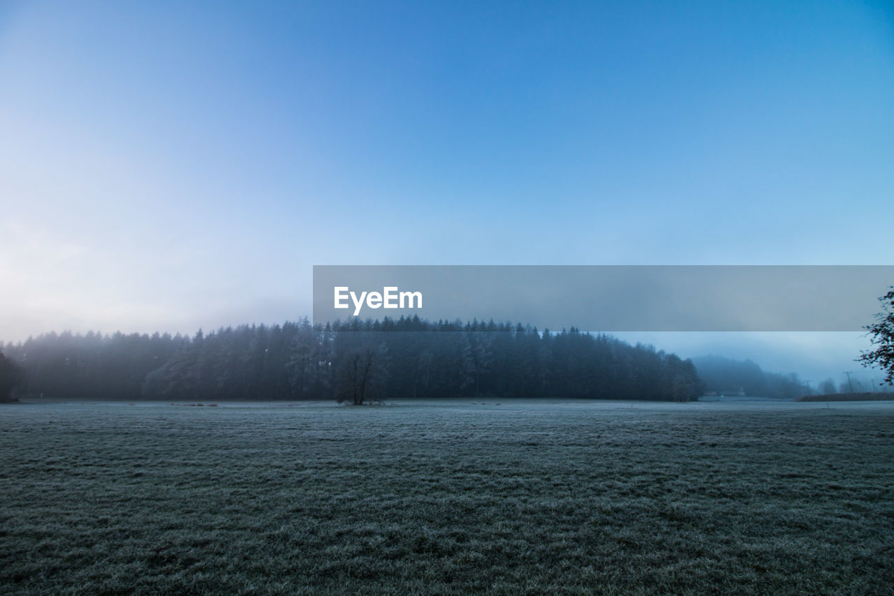 sky, tranquil scene, tranquility, beauty in nature, scenics - nature, landscape, environment, tree, no people, non-urban scene, land, plant, fog, copy space, nature, cold temperature, winter, field, day