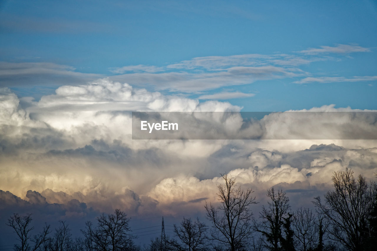 cloud - sky, sky, beauty in nature, scenics - nature, tranquility, tree, tranquil scene, no people, plant, nature, low angle view, outdoors, blue, day, non-urban scene, idyllic, bare tree, sunset, silhouette