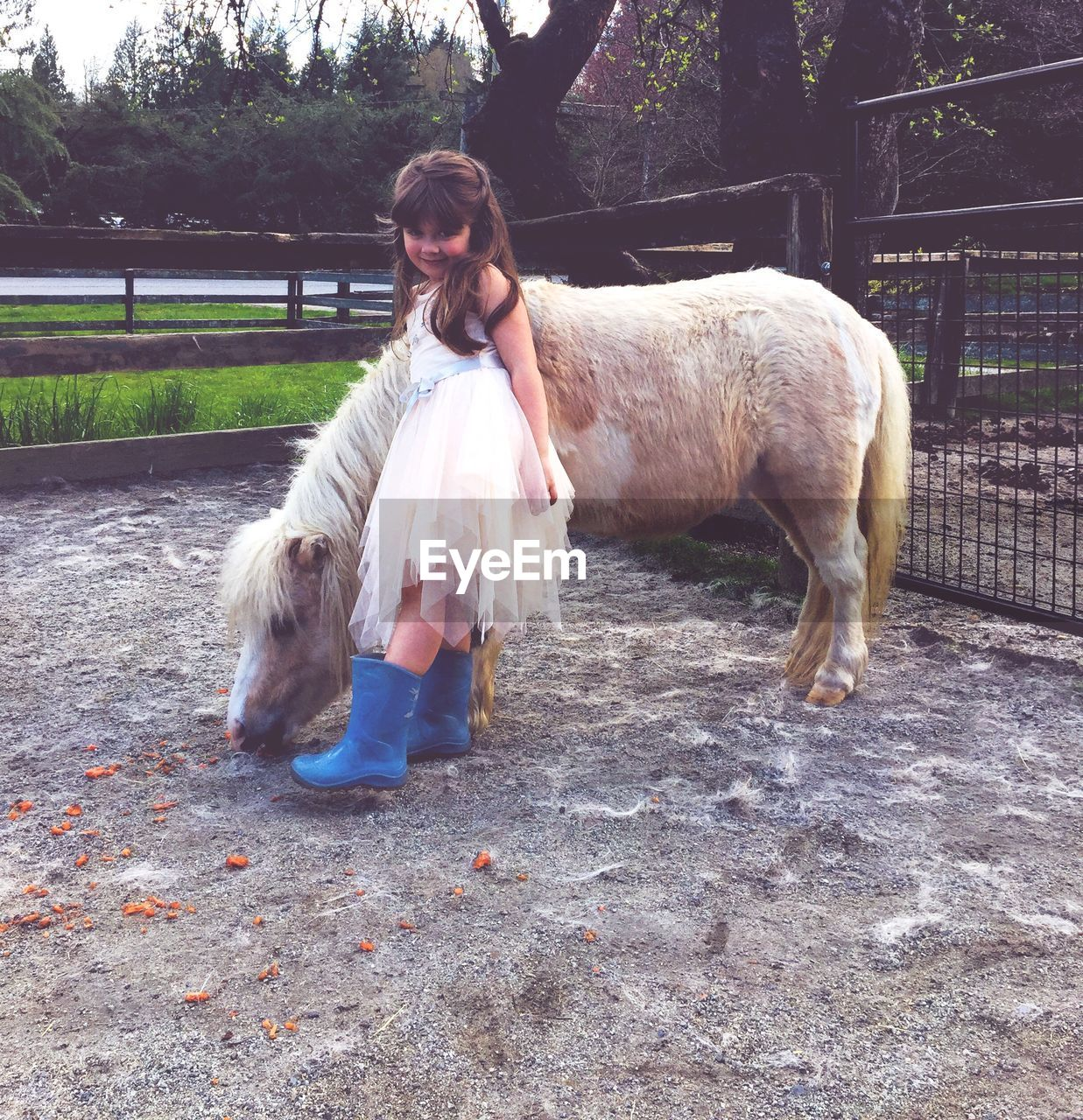 Full length of girl with pony horse at ranch