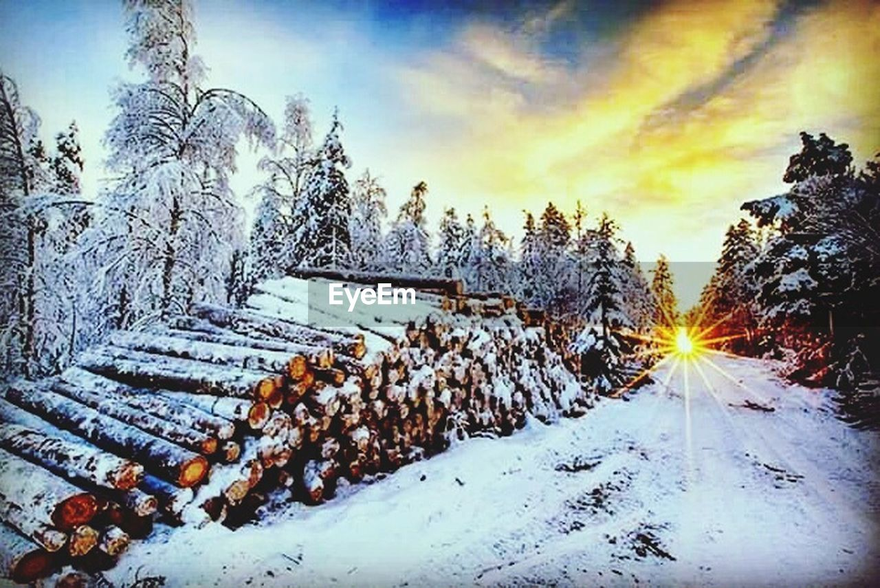 snow, winter, cold temperature, weather, nature, no people, tranquility, beauty in nature, scenics, tranquil scene, landscape, outdoors, sky, tree, frozen, cloud - sky, sunset, day