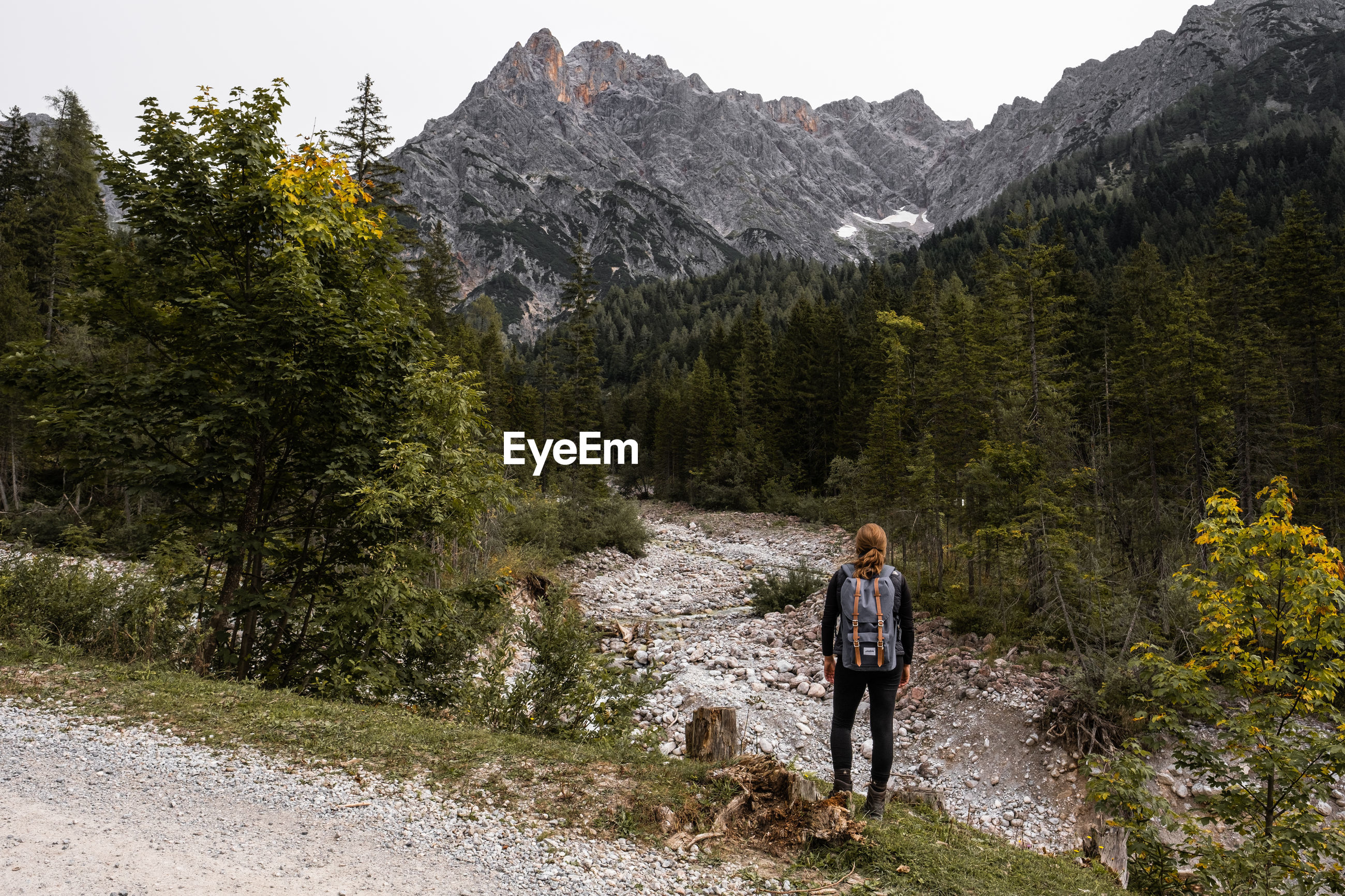 REAR VIEW OF MAN WALKING BY MOUNTAIN