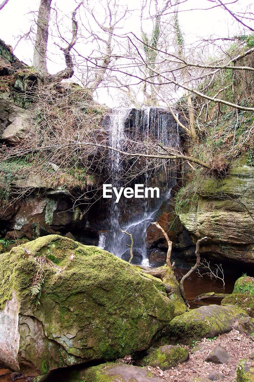nature, beauty in nature, waterfall, rock - object, tree, water, no people, day, outdoors, motion, long exposure, scenics, forest, branch
