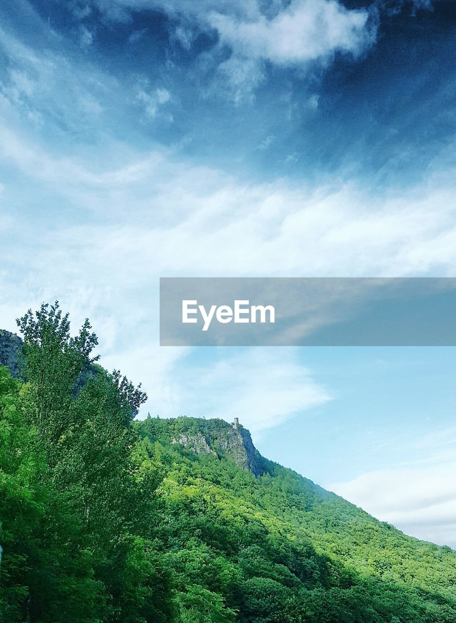 sky, beauty in nature, tranquil scene, tranquility, nature, green color, scenics, cloud - sky, day, outdoors, tree, no people, low angle view, mountain, blue, landscape