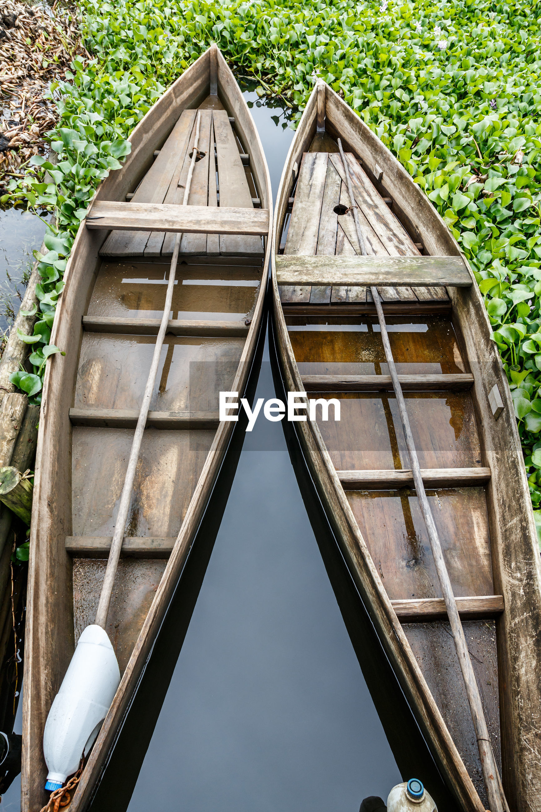 High angle view of boats against plants