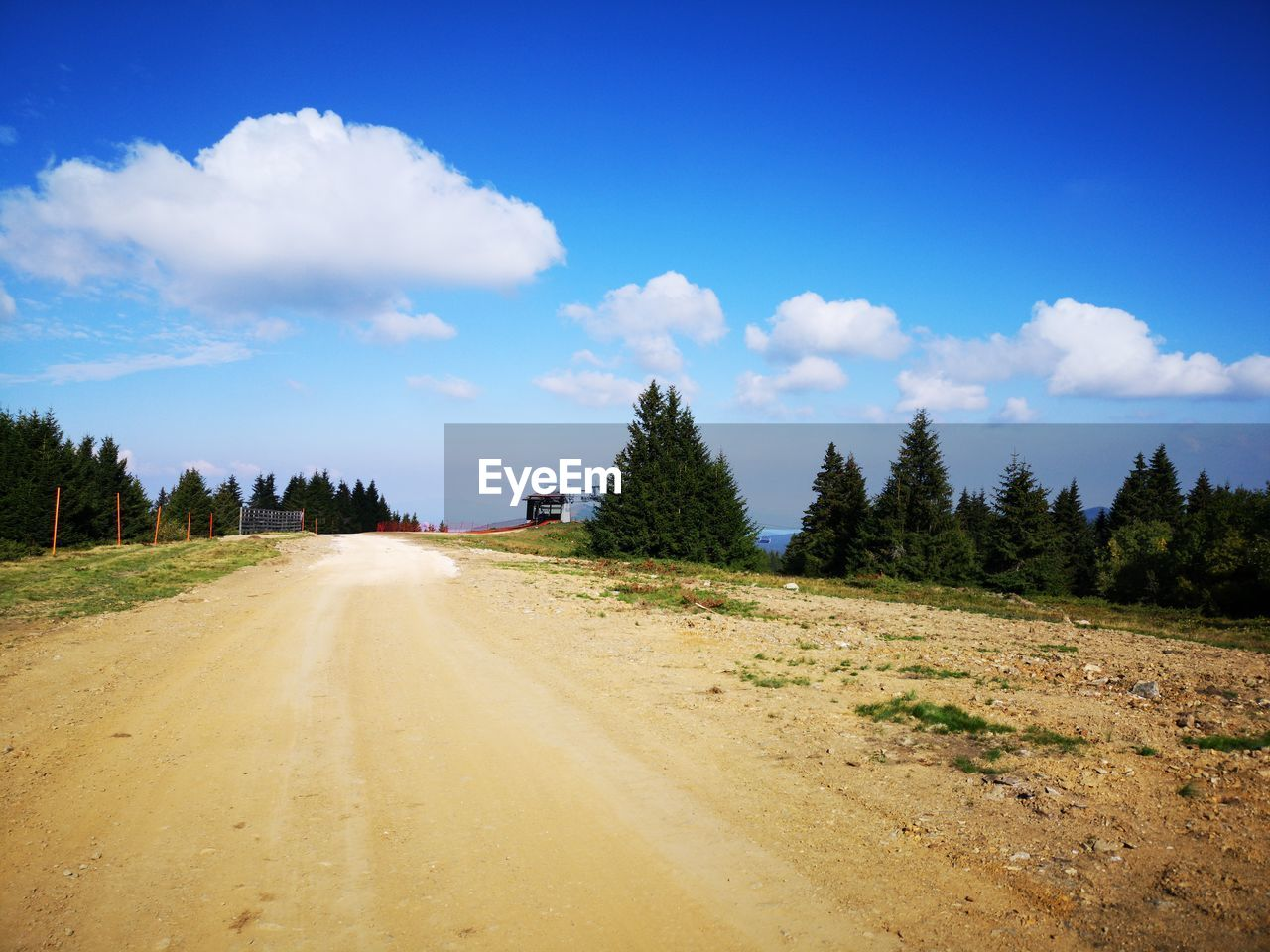 sky, tree, cloud - sky, road, plant, transportation, landscape, the way forward, nature, environment, direction, dirt road, land, scenics - nature, beauty in nature, non-urban scene, tranquility, tranquil scene, day, no people, diminishing perspective, outdoors, long