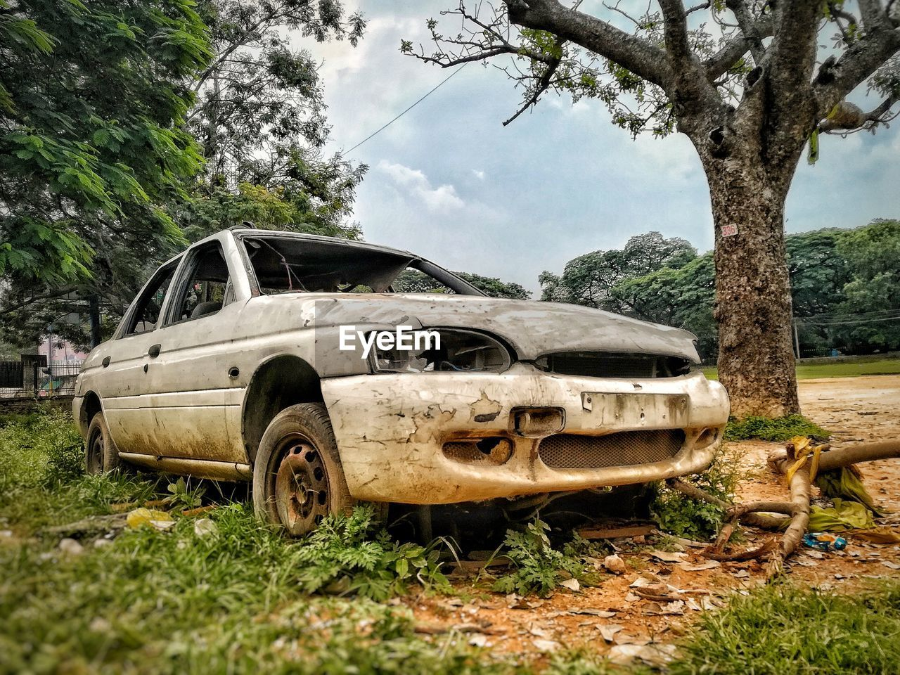tree, plant, motor vehicle, mode of transportation, car, transportation, abandoned, land, nature, day, land vehicle, sky, cloud - sky, no people, obsolete, damaged, field, old, grass, outdoors, deterioration