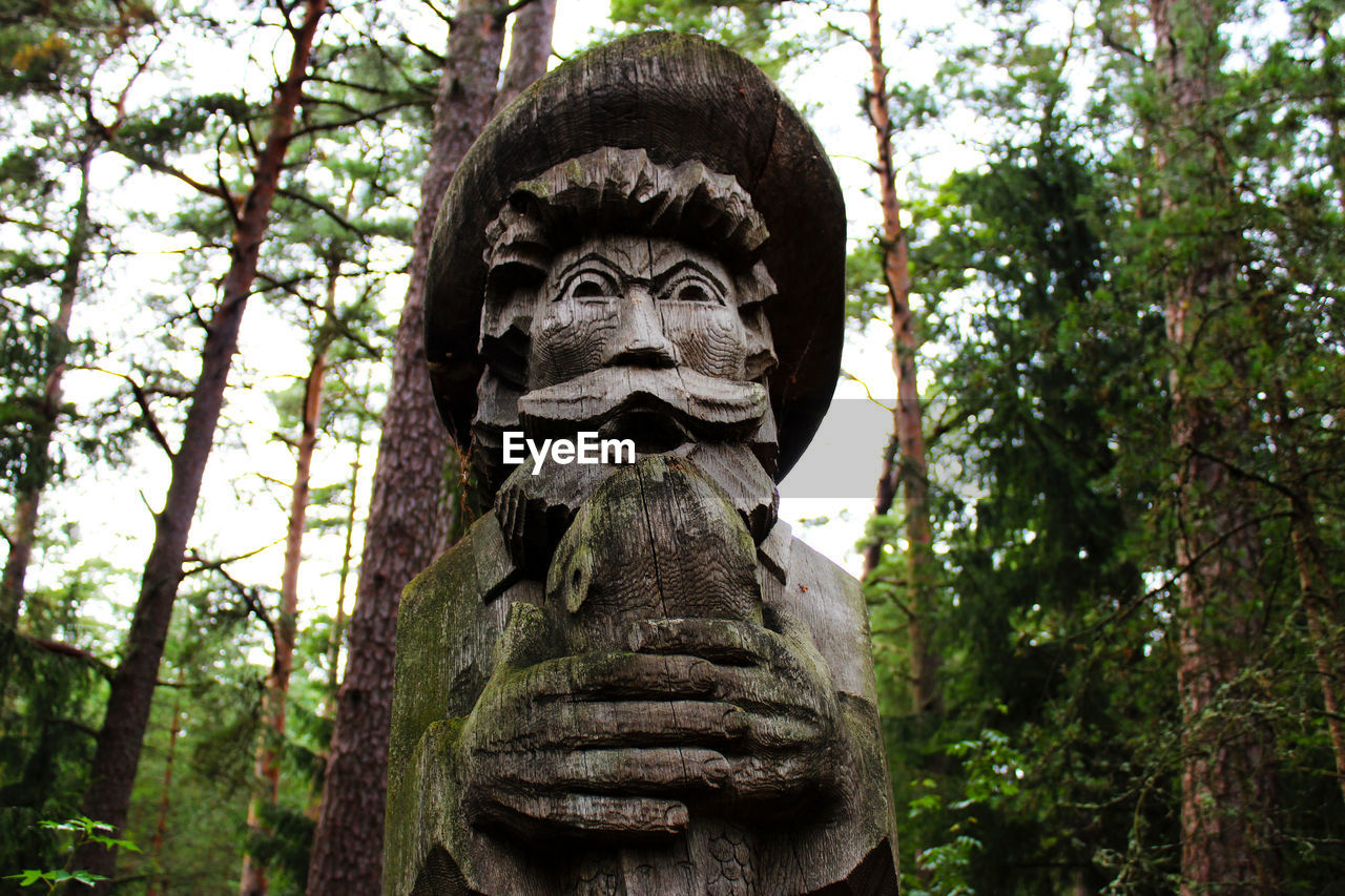 representation, tree, human representation, art and craft, creativity, sculpture, plant, male likeness, statue, no people, craft, day, low angle view, forest, nature, carving - craft product, spirituality, religion, focus on foreground, belief, outdoors