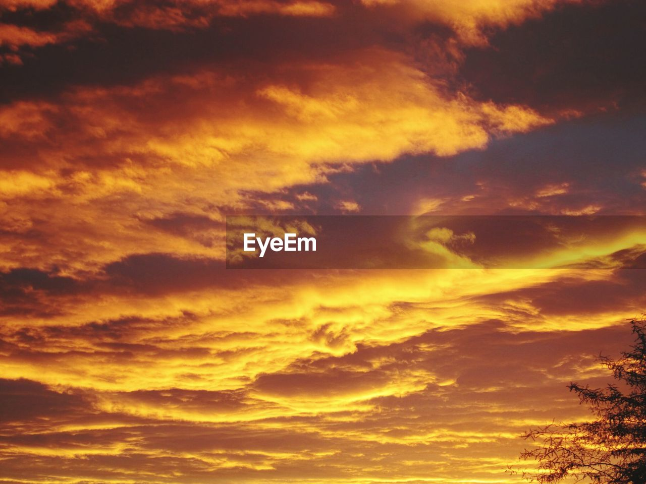 sunset, beauty in nature, nature, scenics, dramatic sky, orange color, idyllic, tranquil scene, sky, tranquility, majestic, cloud - sky, backgrounds, no people, sky only, awe, yellow, outdoors, low angle view, sunlight, day