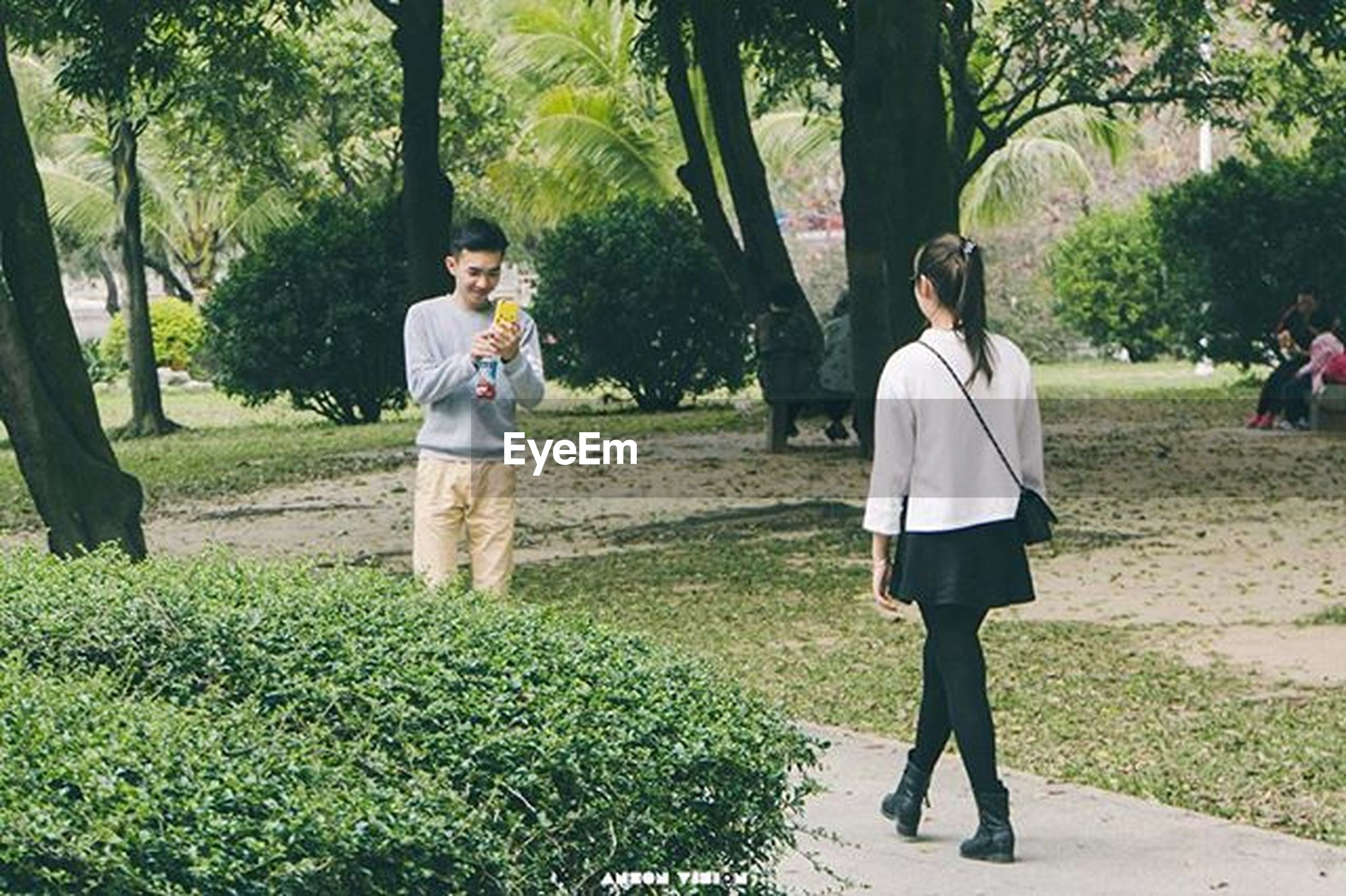 tree, full length, lifestyles, casual clothing, leisure activity, park - man made space, grass, person, rear view, walking, park, growth, young adult, green color, tree trunk, young women, standing