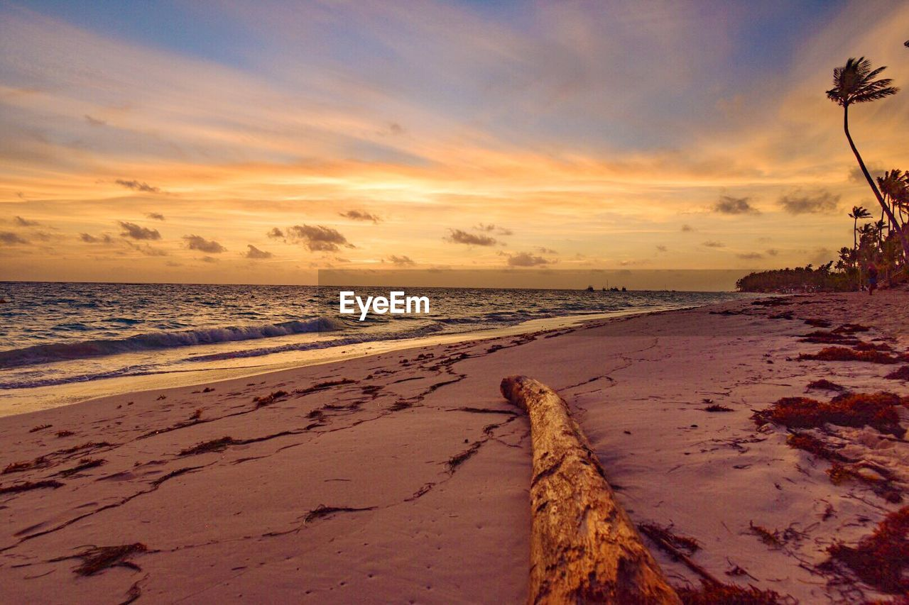 sea, beach, water, sunset, scenics, beauty in nature, tranquil scene, nature, tranquility, sky, horizon over water, sand, outdoors, no people, cloud - sky, tree, day
