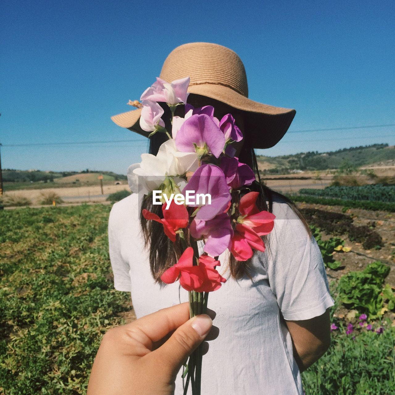 Cropped hand holding flower against woman standing on land