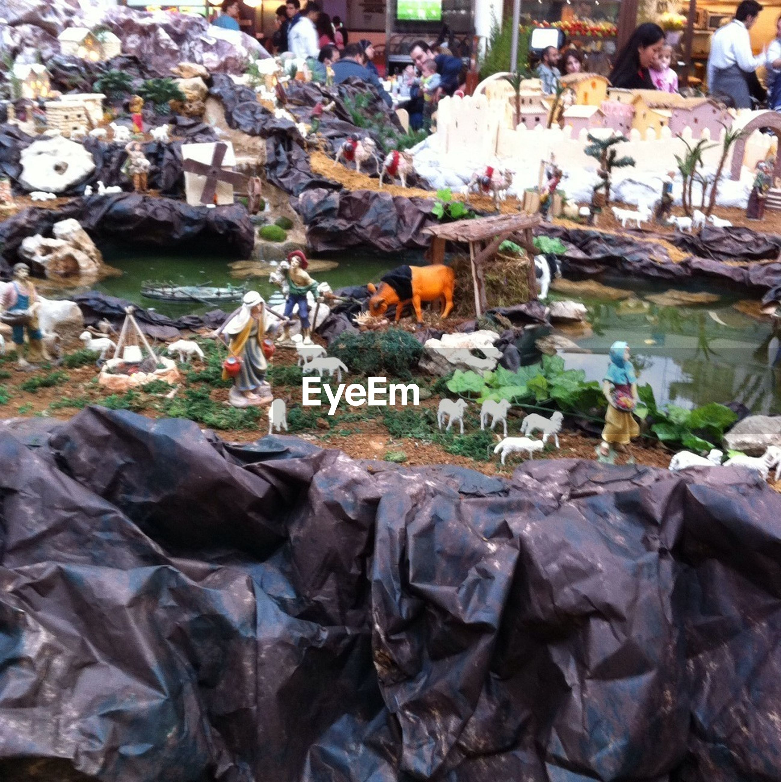 abundance, large group of objects, high angle view, day, outdoors, water, nature, variation, bird, leaf, no people, for sale, animal themes, dry, beauty in nature, market stall, rock - object, market, incidental people
