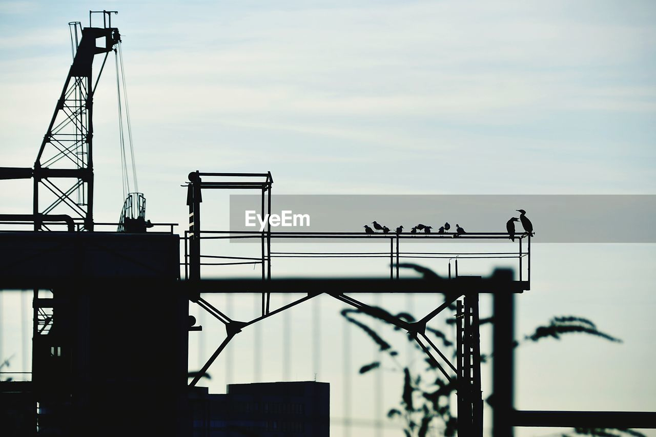 industry, sky, architecture, nature, built structure, metal, low angle view, machinery, cloud - sky, outdoors, construction industry, no people, day, technology, silhouette, crane - construction machinery, fuel and power generation, construction site, development, communication, construction equipment