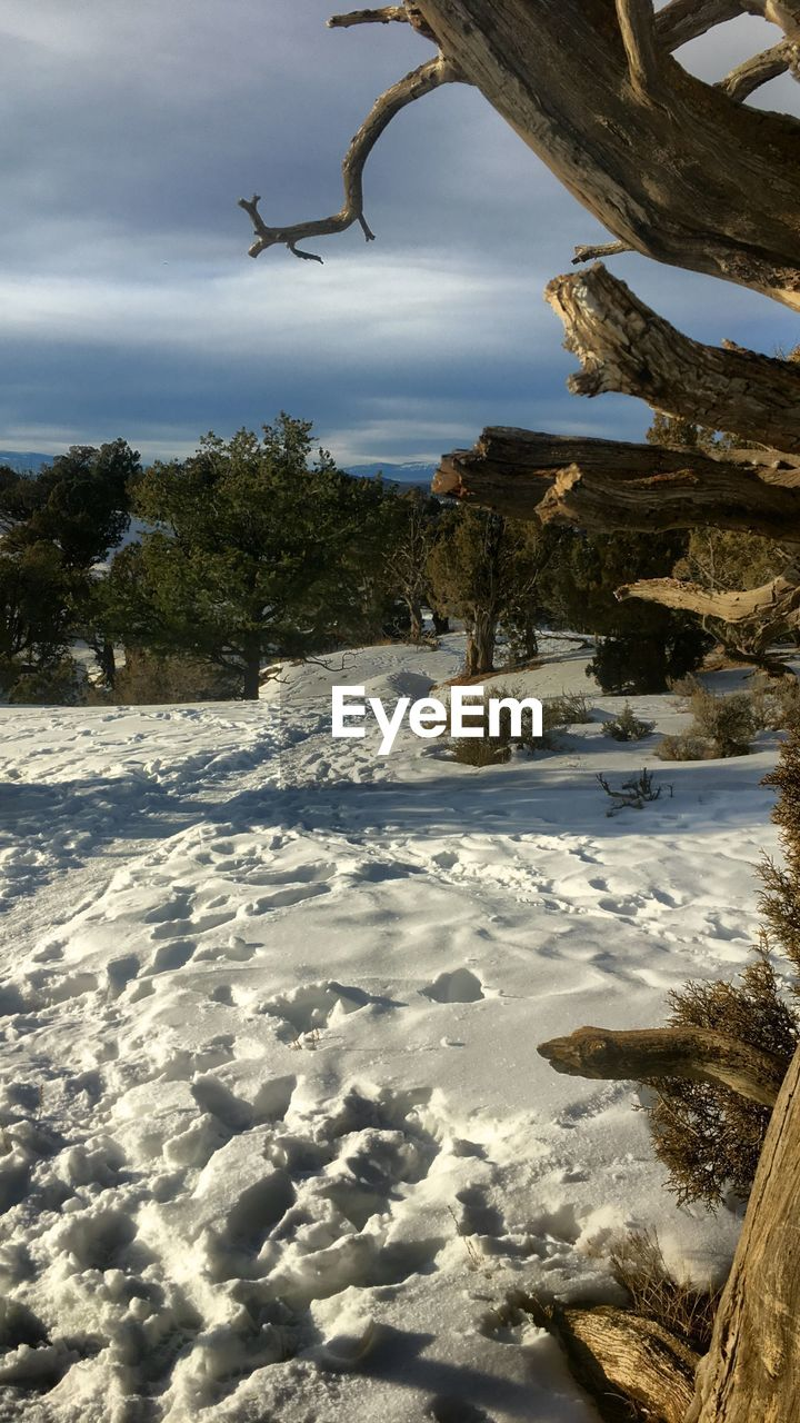 Scenic view of snow covered field against sky during winter