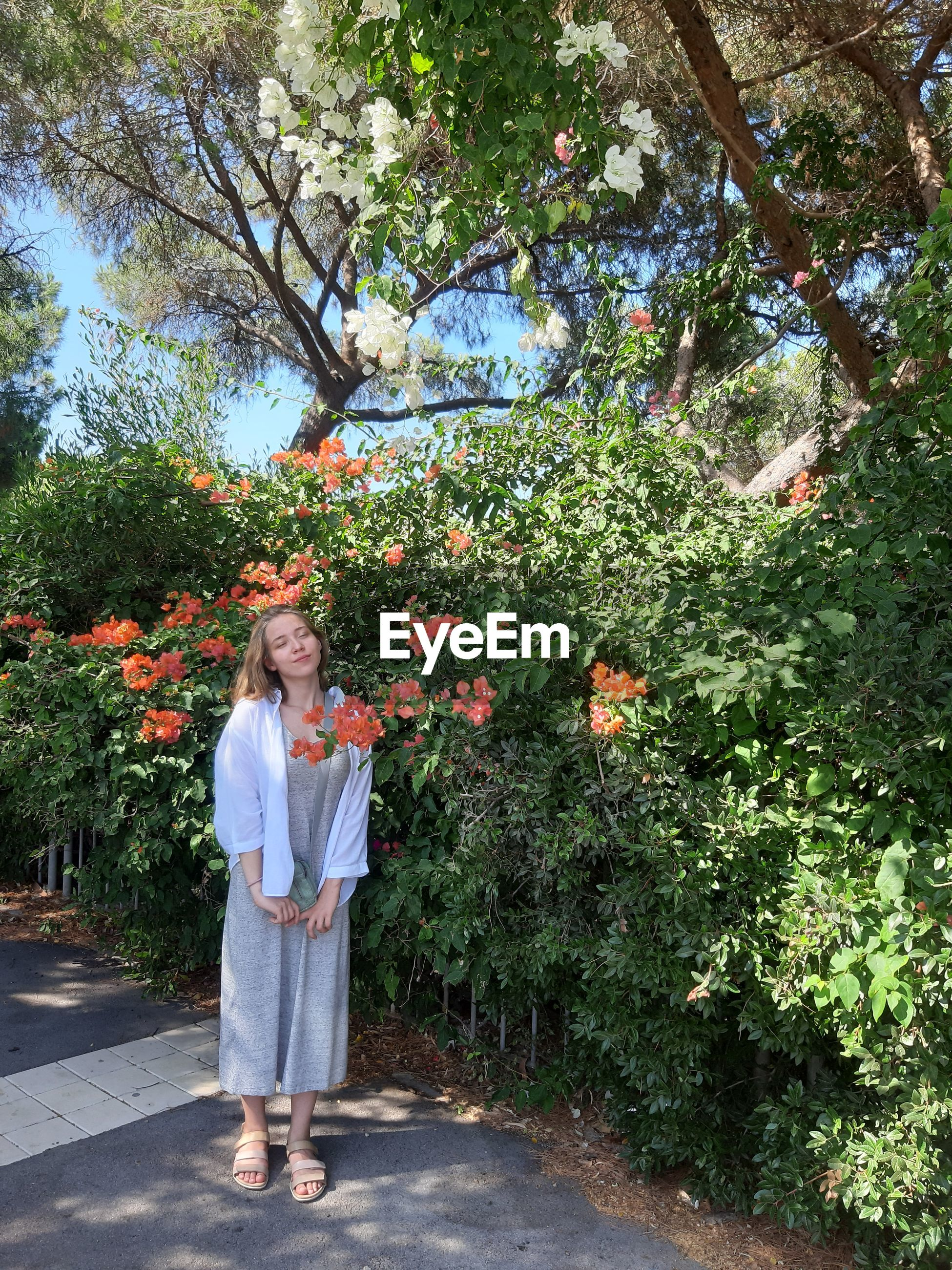 Woman standing by flowering tree