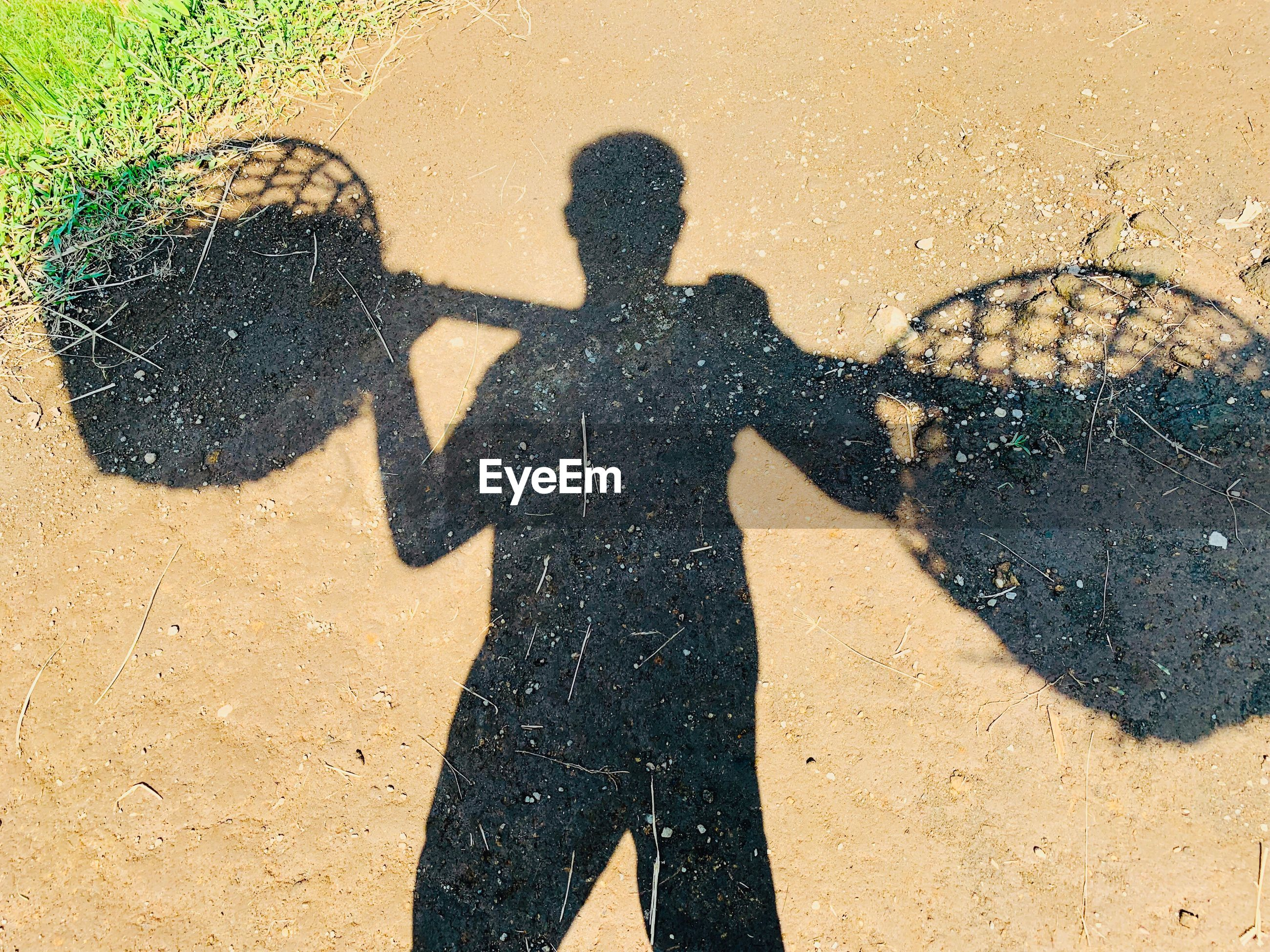 Shadow of man carrying containers on land
