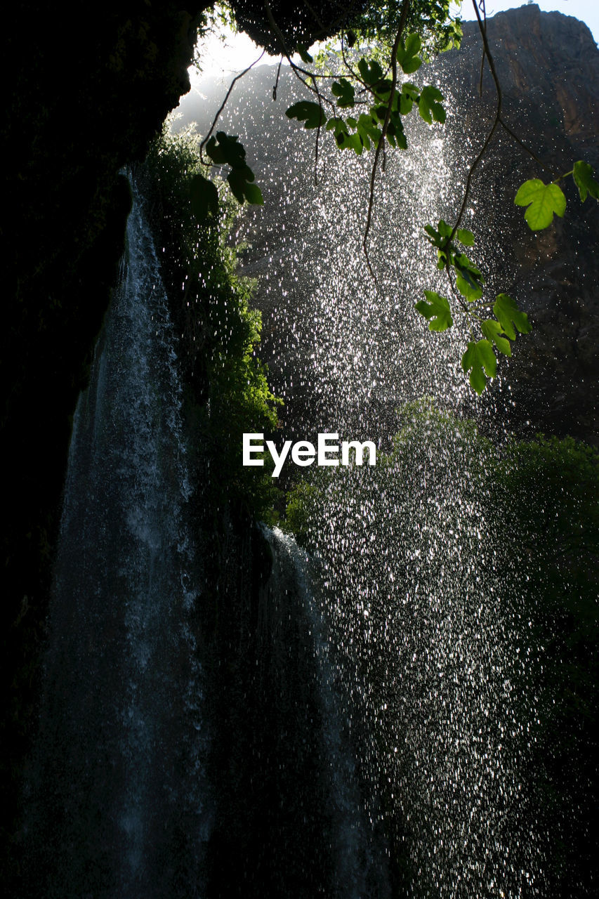 nature, water, plant, no people, tree, day, motion, waterfall, long exposure, growth, beauty in nature, outdoors, blurred motion, leaf, splashing, plant part, flowing water, wet, drop, spraying, flowing, falling water, power in nature