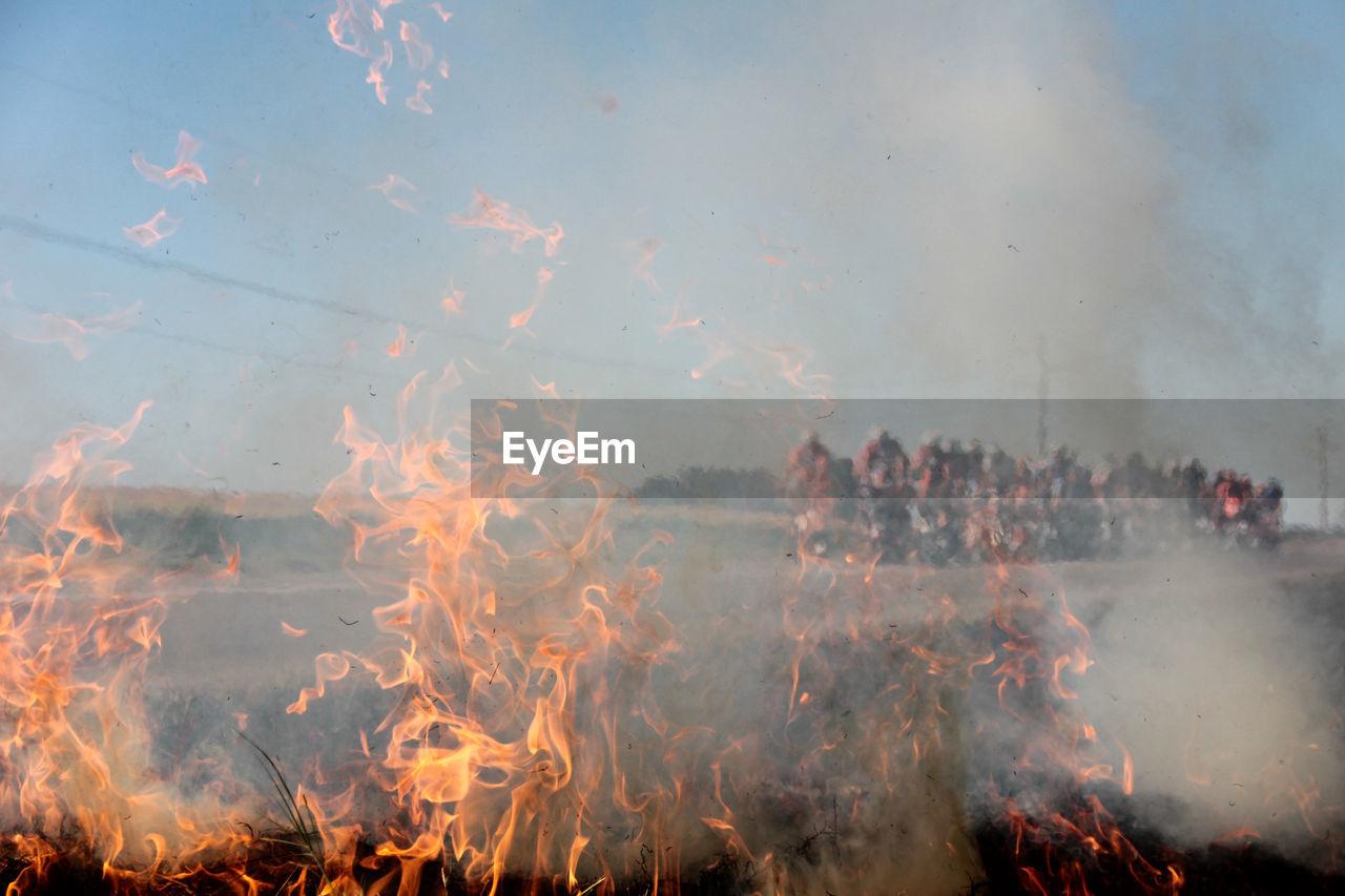 Detail Shot Of Fire On Landscape