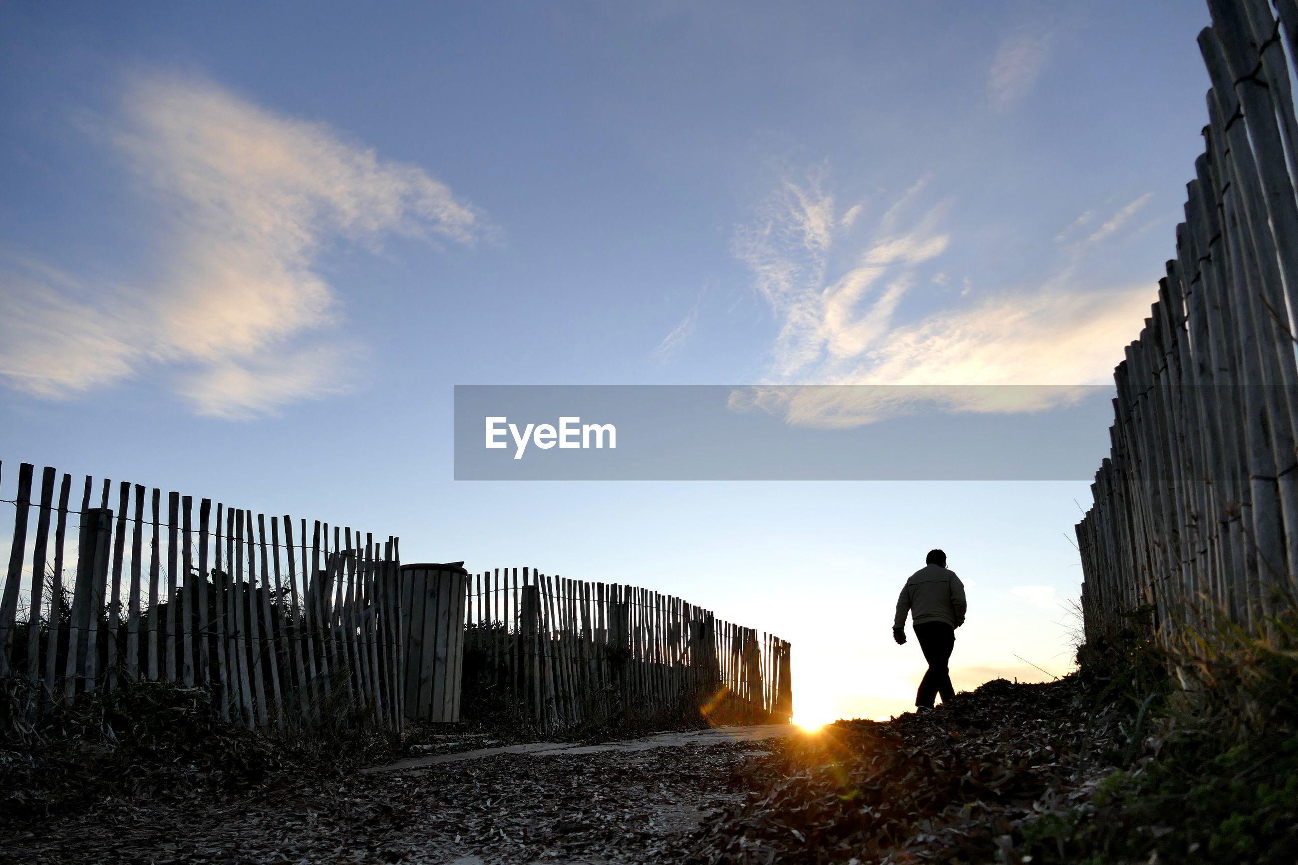 Rear view of a man walking on landscape against blue sky