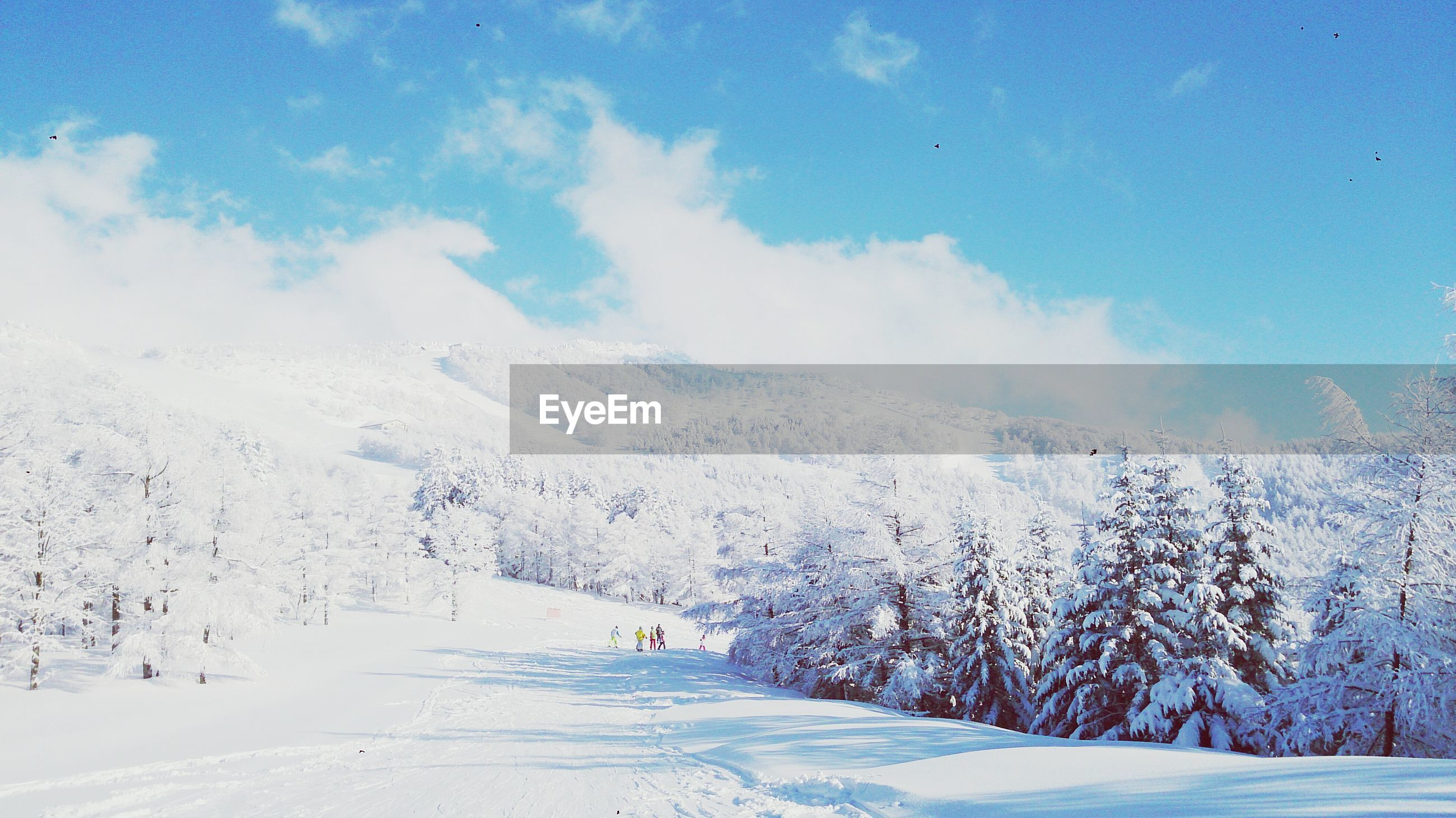 snow, winter, cold temperature, season, weather, landscape, tranquil scene, tranquility, beauty in nature, covering, scenics, tree, nature, sky, white color, mountain, non-urban scene, blue, snowcapped mountain, snow covered