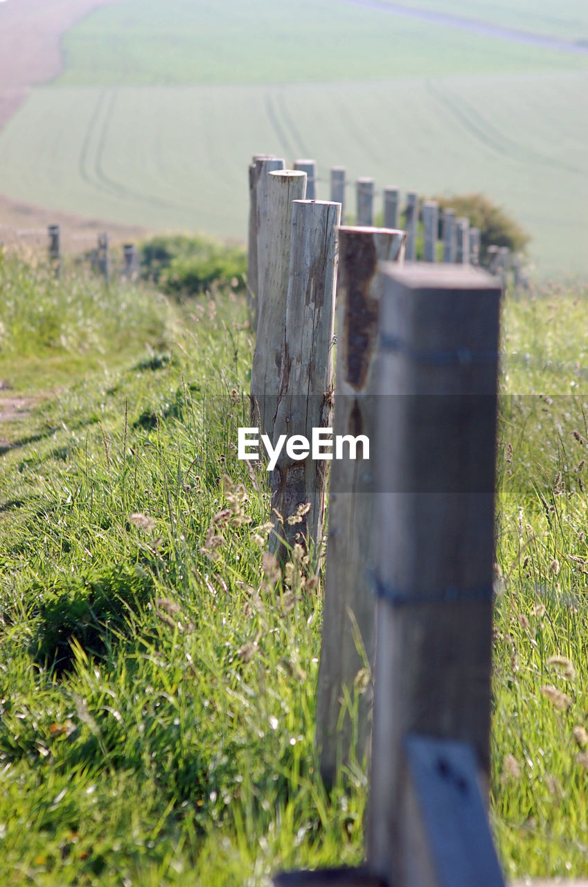 field, grass, no people, selective focus, wooden post, outdoors, landscape, nature, day, close-up