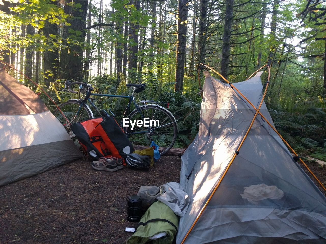 transportation, bicycle, day, tree, nature, outdoors, no people, forest, adventure