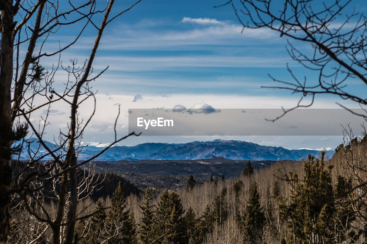 mountain, nature, beauty in nature, sky, scenics, tranquility, no people, tree, tranquil scene, bare tree, landscape, outdoors, day, blue, mountain range, branch