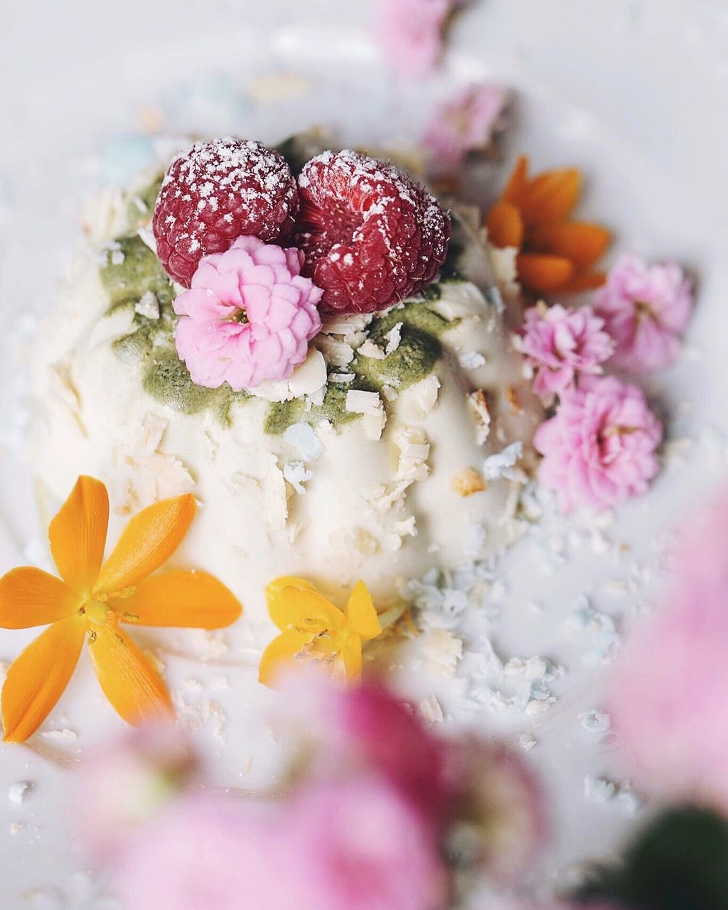 Close-up of flowers garnished on sweet food