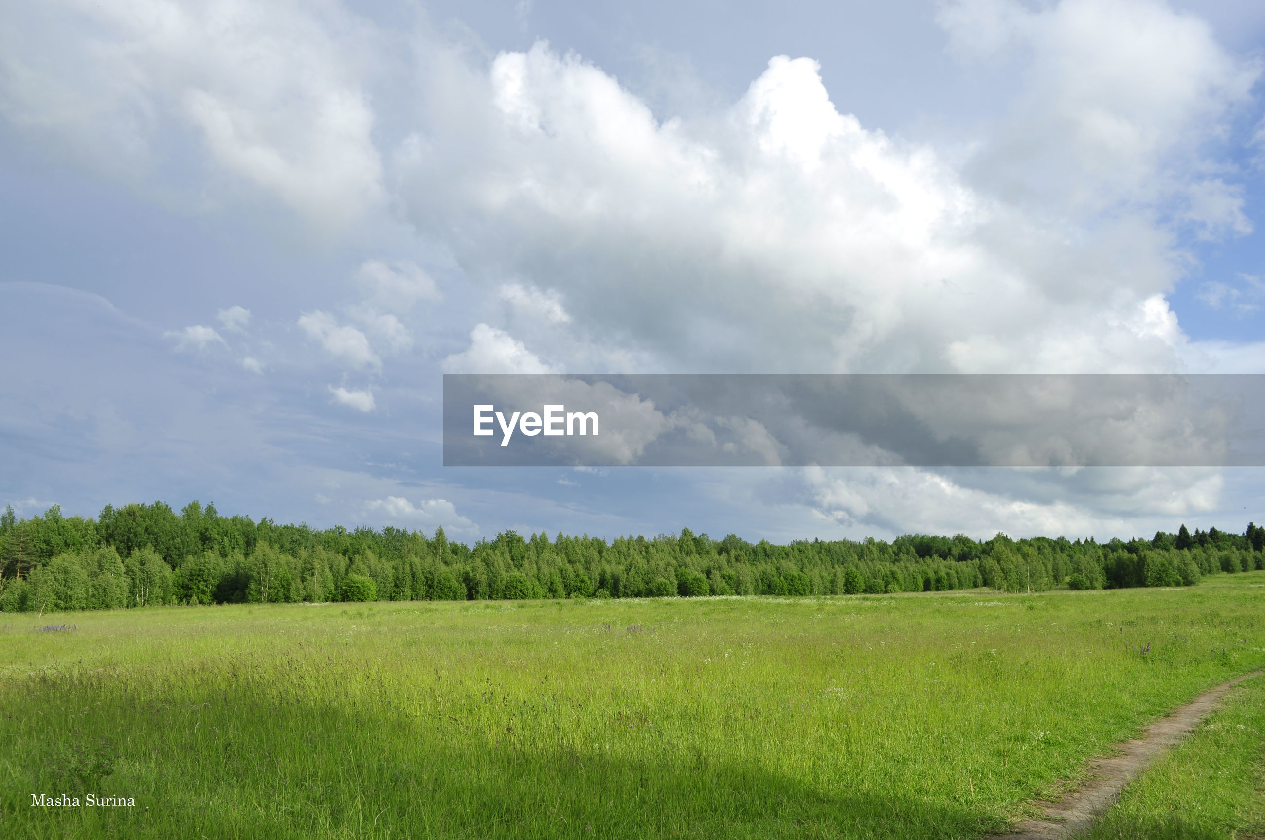 sky, field, landscape, tranquil scene, tranquility, grass, scenics, cloud - sky, beauty in nature, rural scene, agriculture, growth, green color, nature, cloud, cloudy, farm, tree, grassy, crop