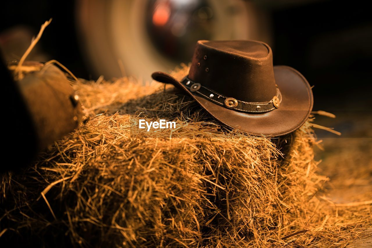 selective focus, hay, close-up, no people, food and drink, focus on foreground, still life, nature, indoors, wood - material, sunlight, cup, plant, day, heat - temperature, drink, farm, hat, mug, agriculture