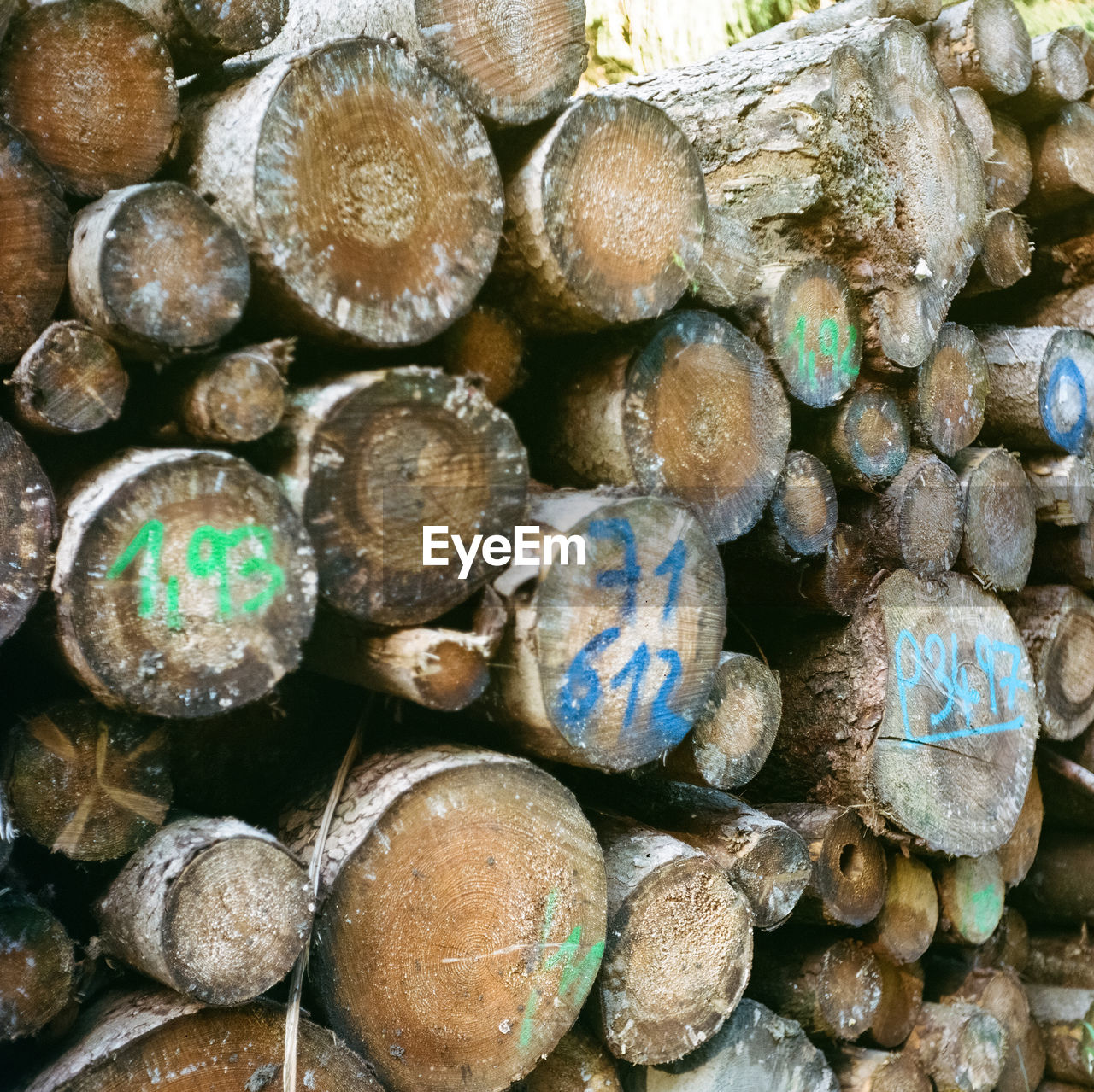 large group of objects, abundance, stack, full frame, no people, backgrounds, day, timber, log, nature, close-up, wood, wood - material, firewood, textured, outdoors, heap, fuel and power generation, fossil fuel, pattern