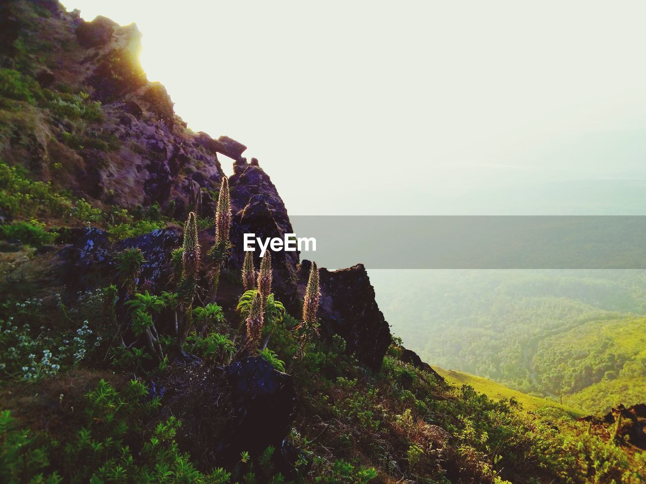 rock formation, rock - object, nature, mountain, beauty in nature, tranquility, cliff, tranquil scene, scenics, day, landscape, outdoors, physical geography, sky, adventure, no people, clear sky, scenery, mammal