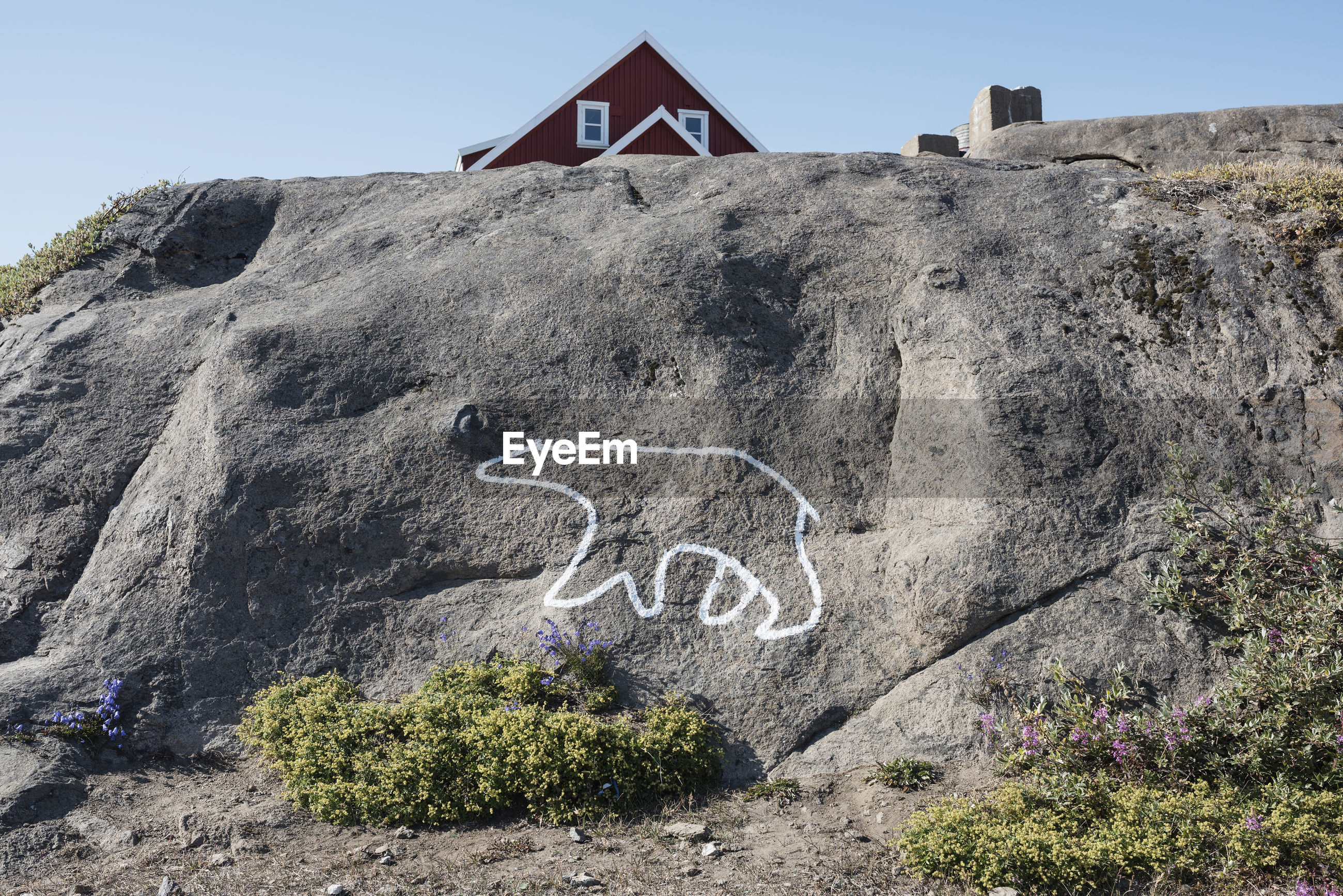 White outline of polar bear painted on rock against sky as message of global warming