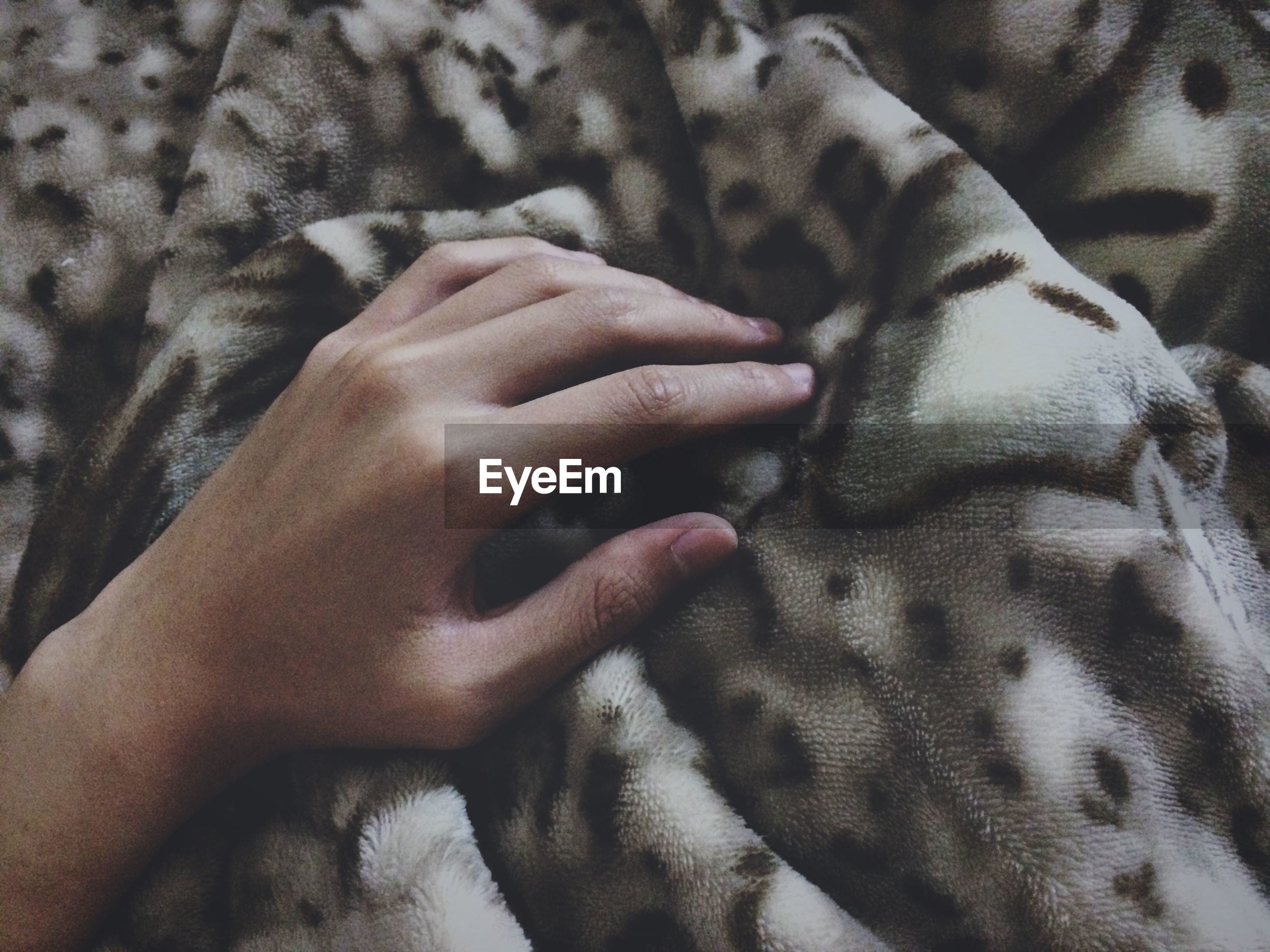 indoors, person, part of, bed, relaxation, sleeping, close-up, cropped, lifestyles, animal themes, unrecognizable person, lying down, resting, human finger, midsection, eyes closed