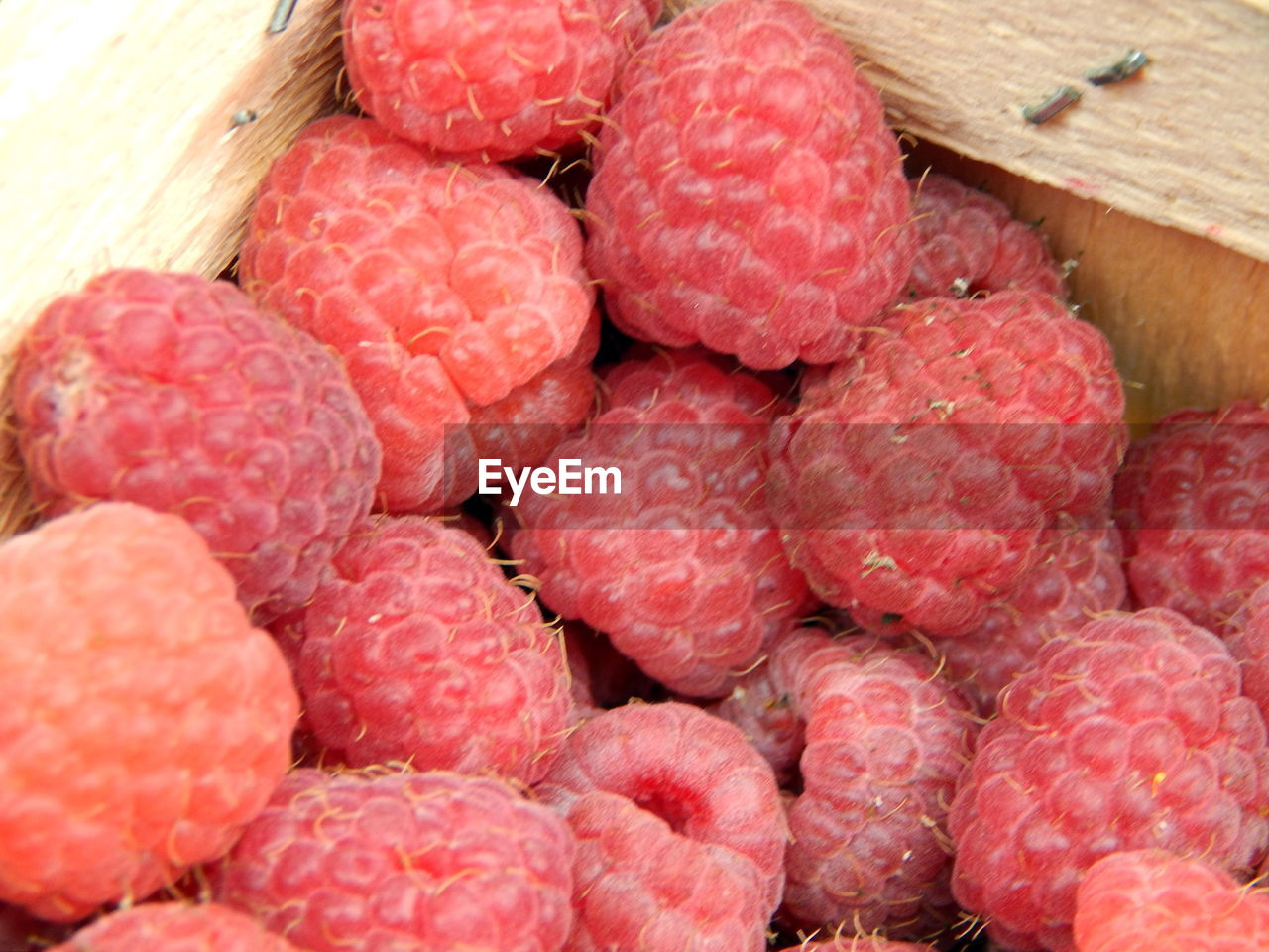 food and drink, healthy eating, food, fruit, wellbeing, red, freshness, berry fruit, large group of objects, raspberry, no people, close-up, abundance, ripe, juicy, still life, lychee, day, indoors, strawberry