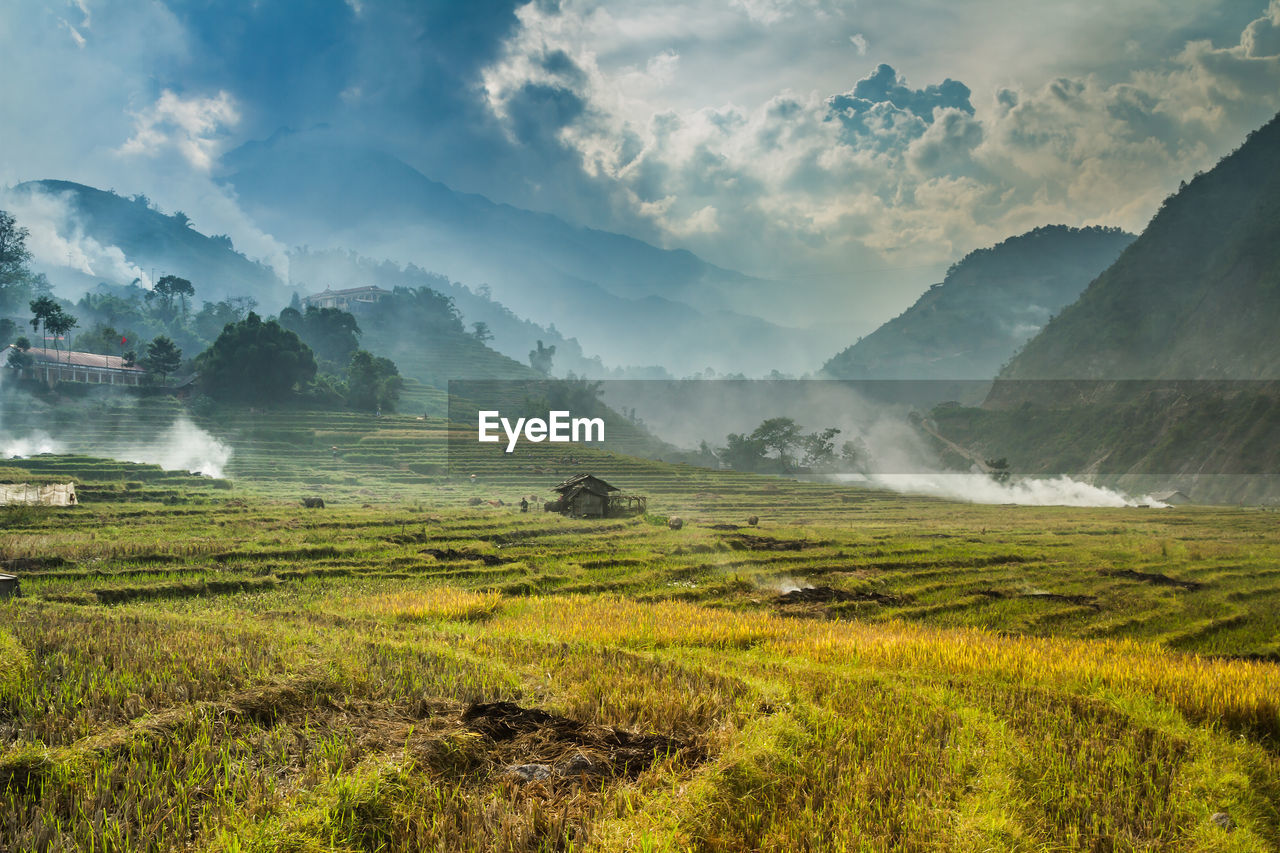 scenics - nature, landscape, environment, cloud - sky, tranquil scene, beauty in nature, mountain, tranquility, sky, land, field, fog, no people, nature, plant, green color, non-urban scene, day, grass, outdoors, hazy